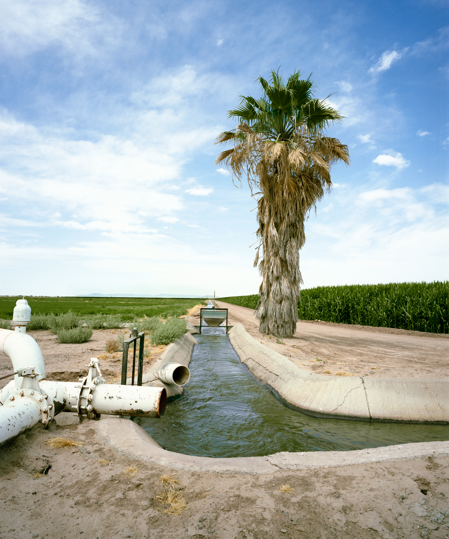 Ak Chin Farms I, Maricopa, AZ. 2013