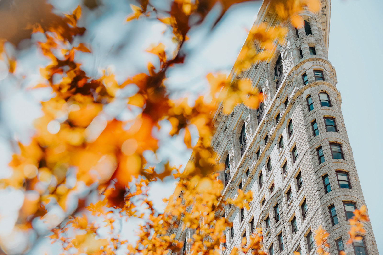 Melanie Sutrathhada shares her top 20 things to do in NYC this fall..jpg