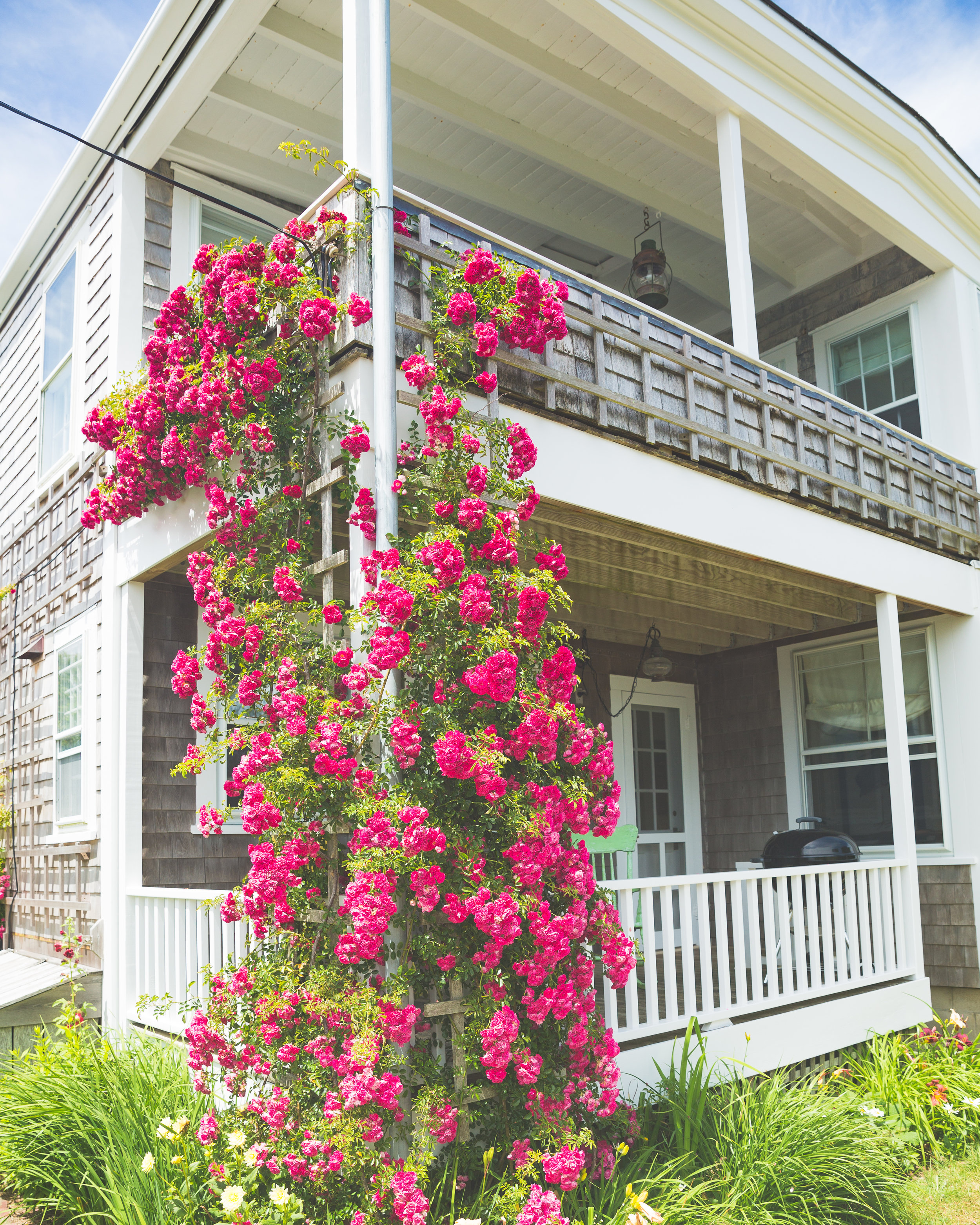 Melanie Sutrathada shares her top 10 list of things to do in Nantucket.jpg