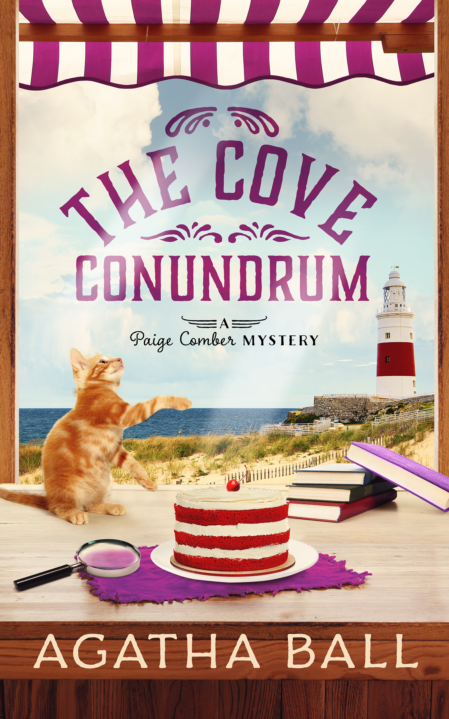 The Cove Conundrum - Ebook Small.jpg