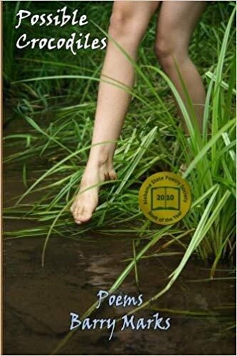 (Brick Road Poetry Press, May 2011)