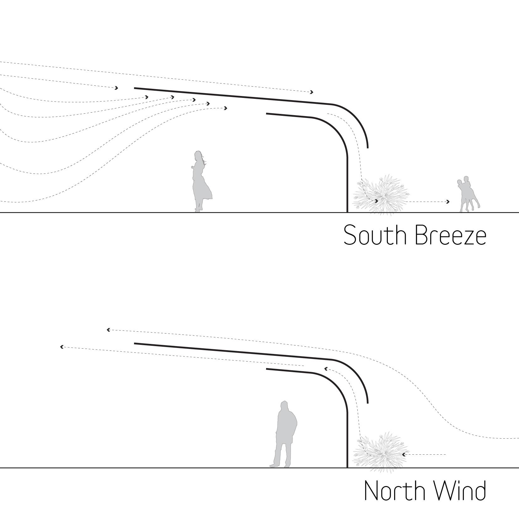 Climatic performance diagram showing site wind patterns in relationship to the section of the pavilion.   Diagramm der vorherrschenden Winde in Relation zum Pavillon.