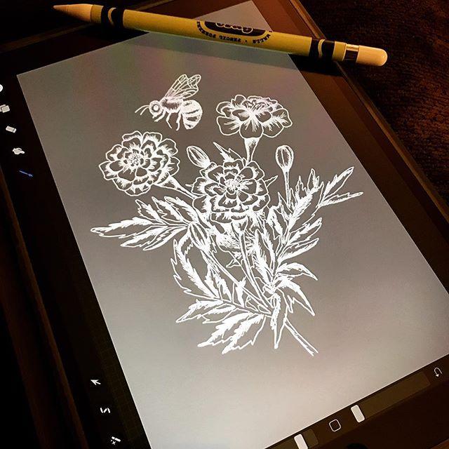 I forgot how much I enjoy this. #Procreate #Newbie #Illustration #UseYourHands #Flowers #Marigolds #Bee #IpadDrawing #WeddingProjects #Productivity #GettingShitDone