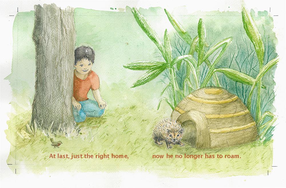 hedgehog_home.jpg