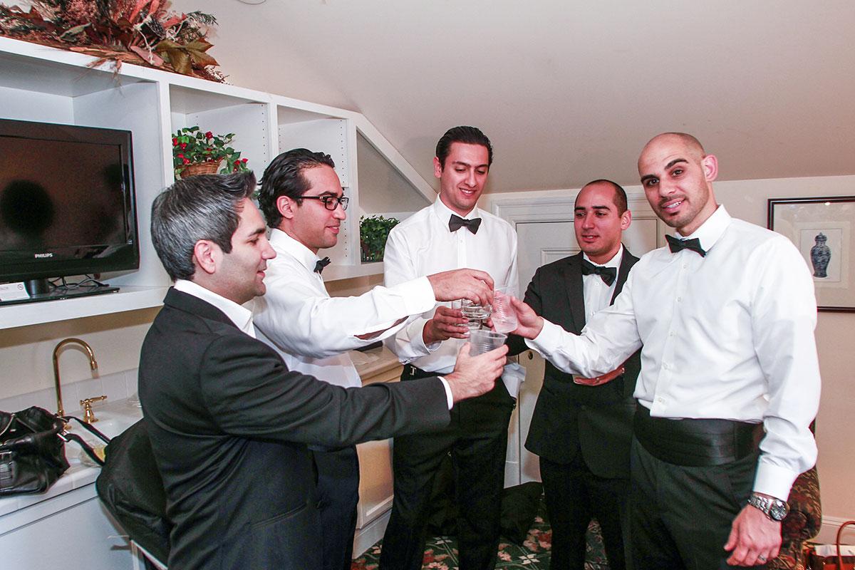 Wedding_Chicago_Ali_Hengameh_003.jpg