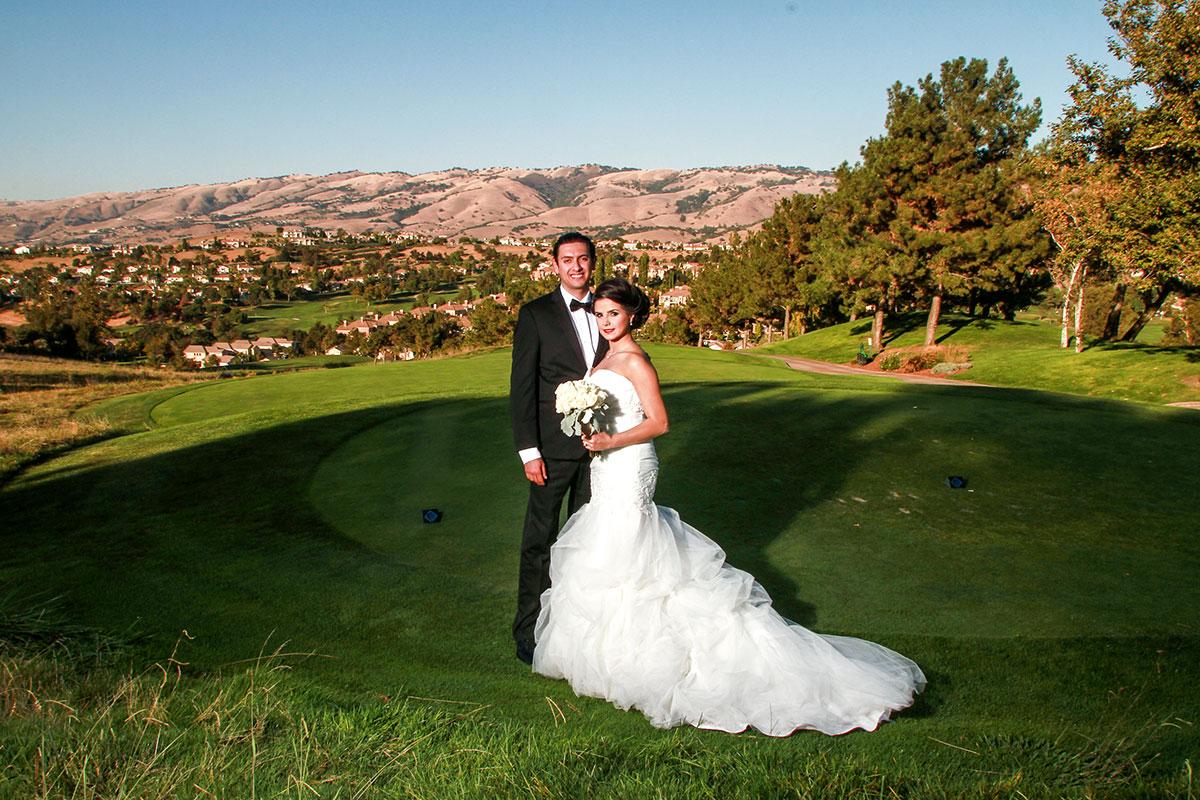 Wedding_Chicago_Ali_Hengameh_013.jpg