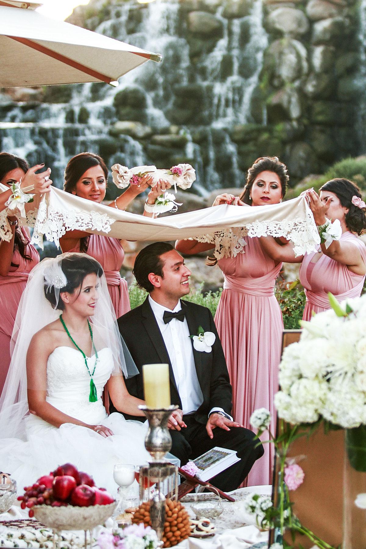 Wedding_Chicago_Ali_Hengameh_017.jpg