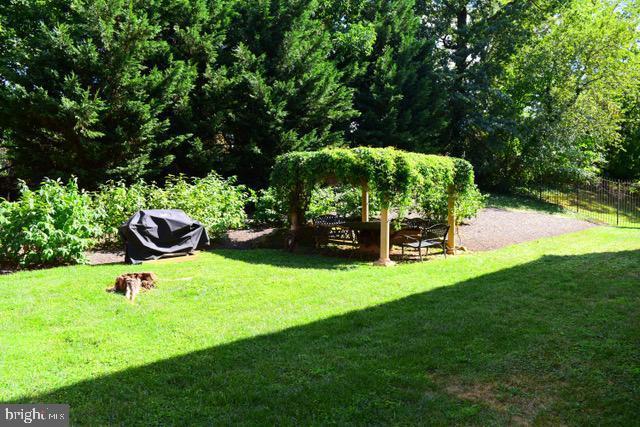 Backyard-Common Area.jpg