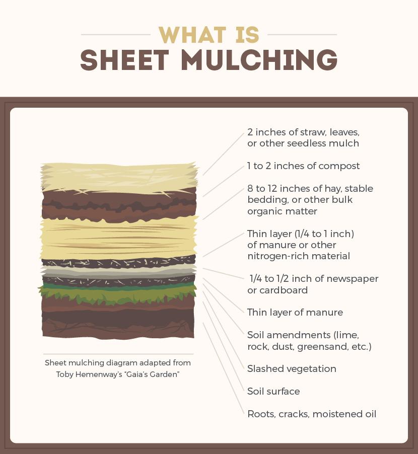 Sheet Mulching from  Fix.com