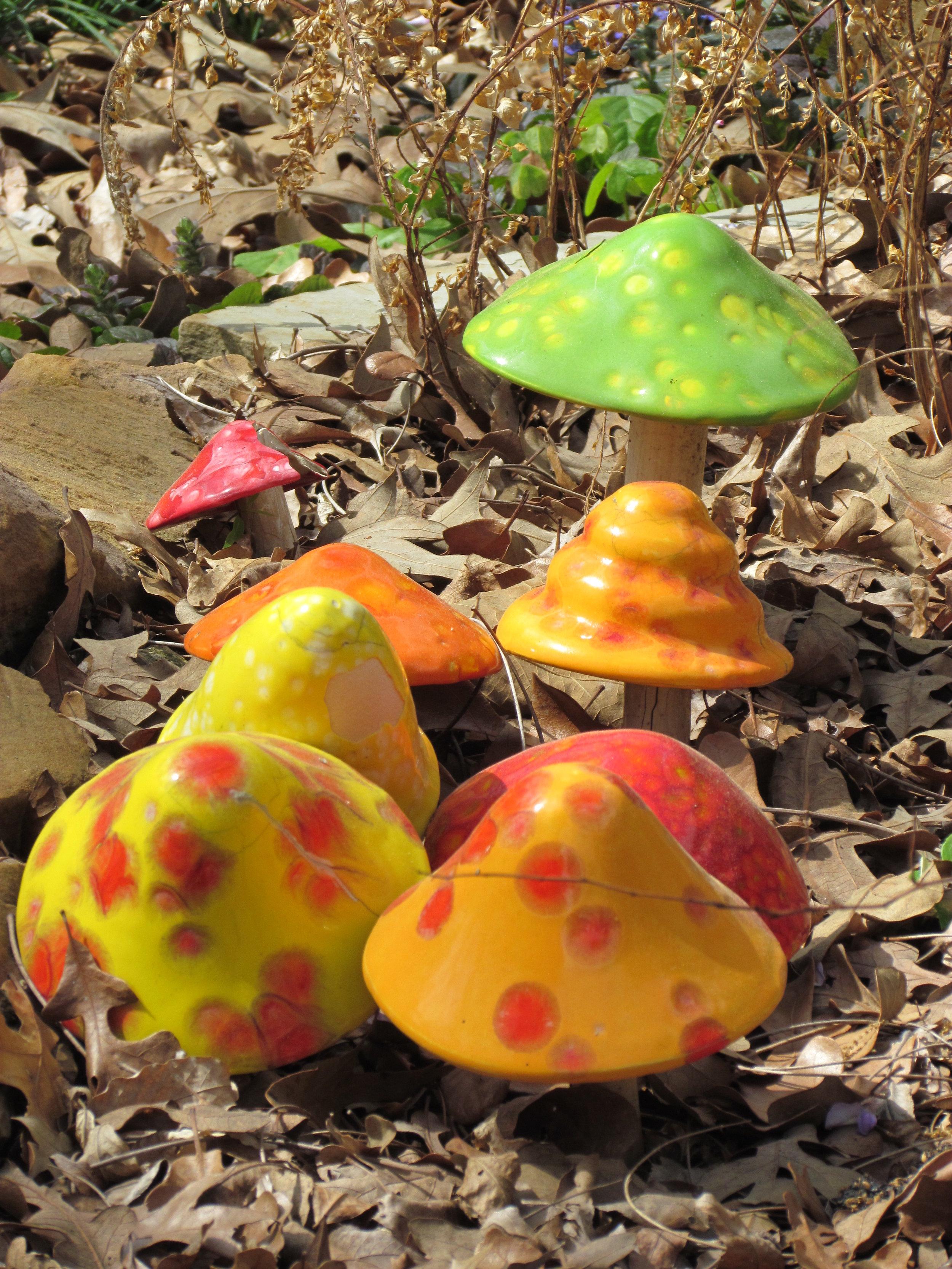 Mushrooms in Glass.JPG
