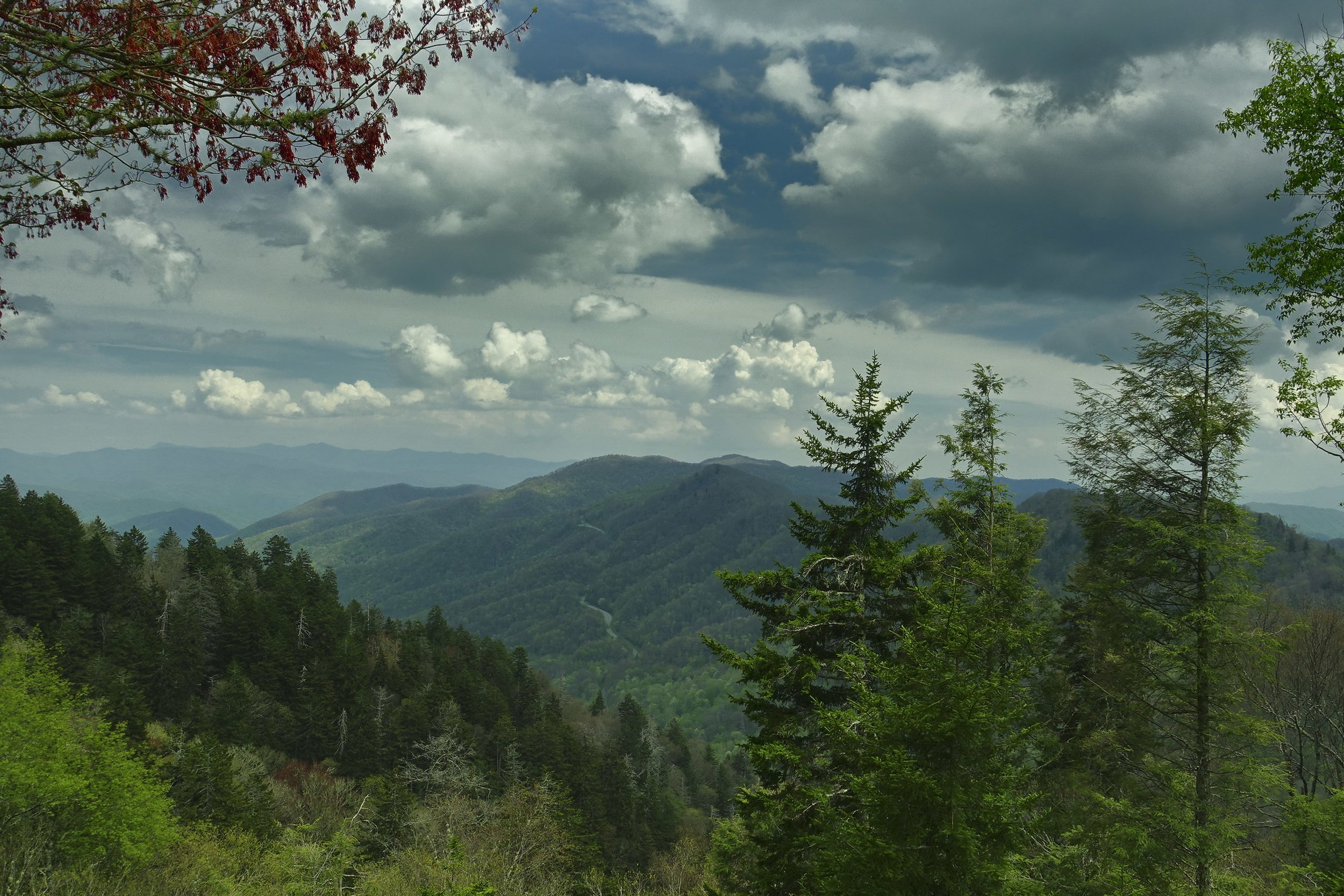 Great Smoky Mountains National Park, Tennessee by Niagara66