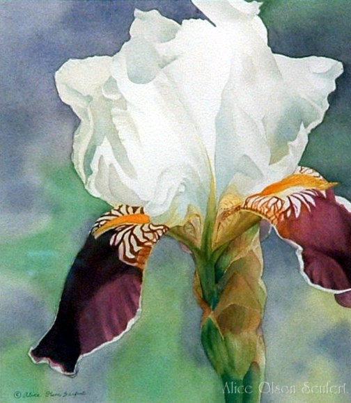 Graceful  Watercolor by Alice Olson Seufert