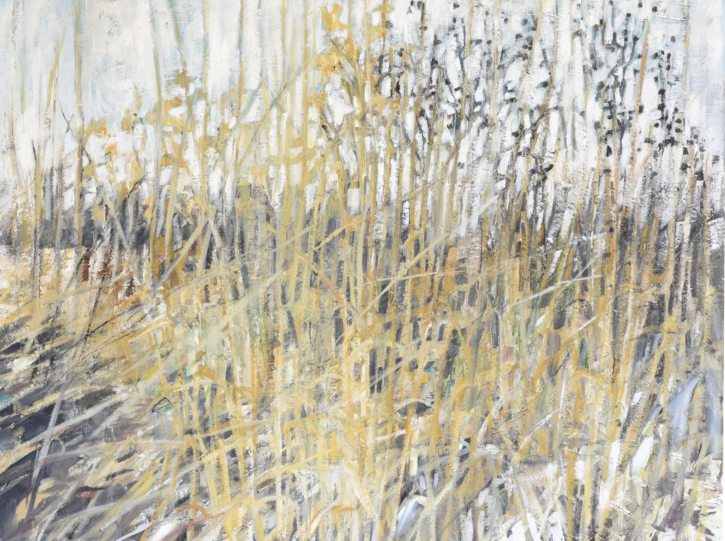 Small Prairie