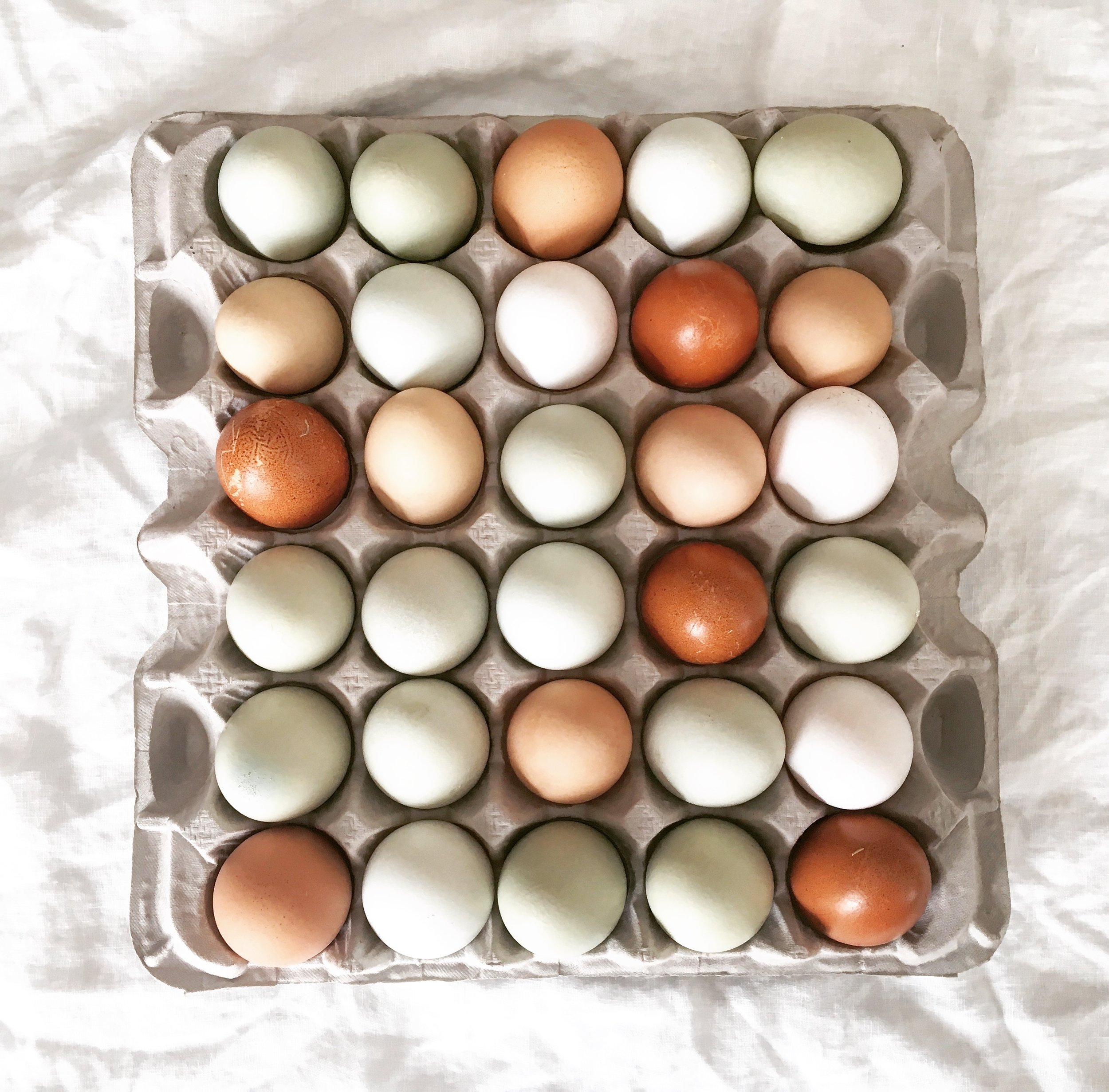Heirloom eggs from Rachel's hens.