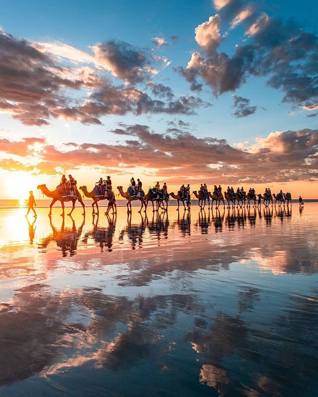 A sunset camel ride to remember 📸@from.miles.away 📍Broome, Western Australia