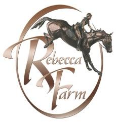Team-Rebecca-LLC.jpg