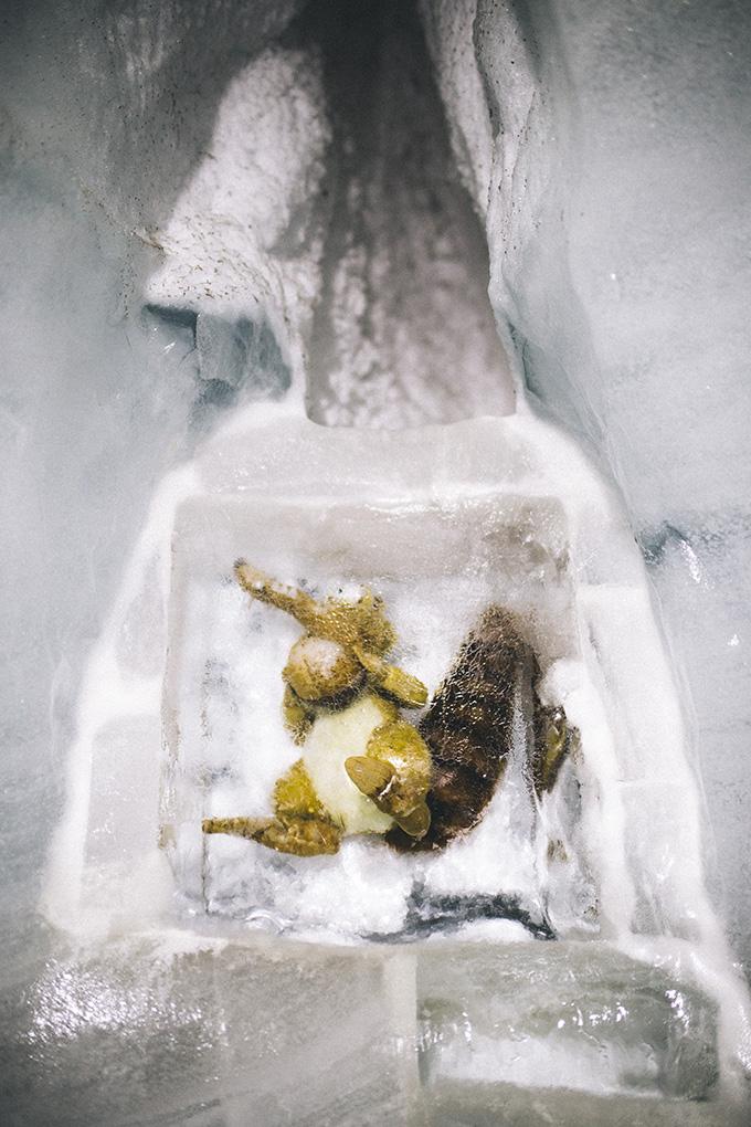 Scrat-from-ice-age.jpg