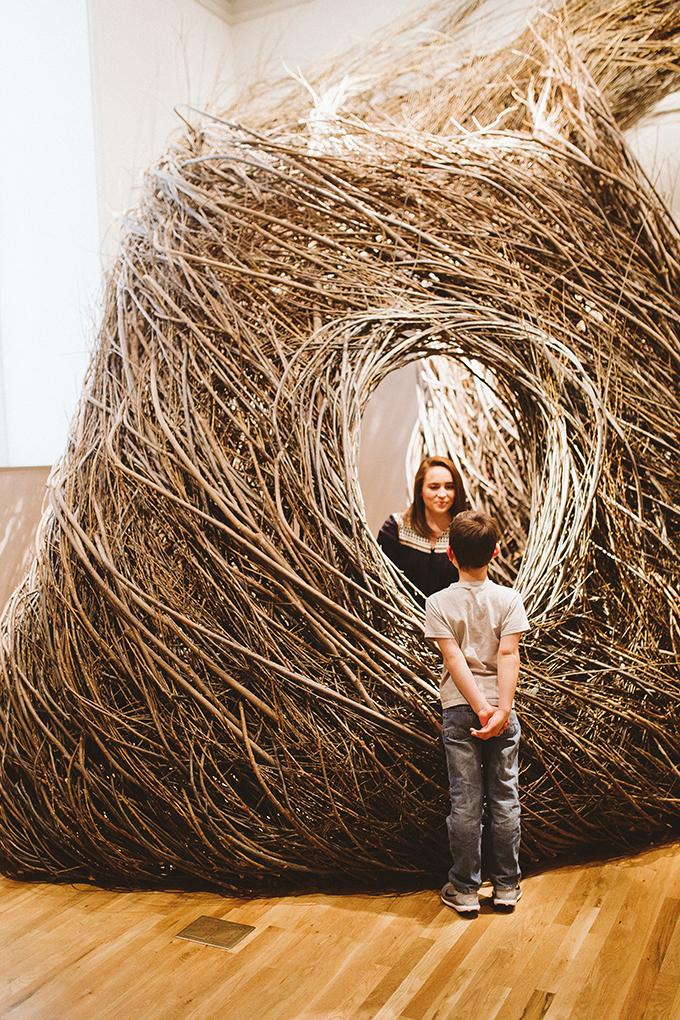 nests-renwick-gallery.jpg