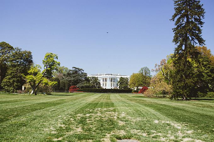 the-white-house-usa.jpg