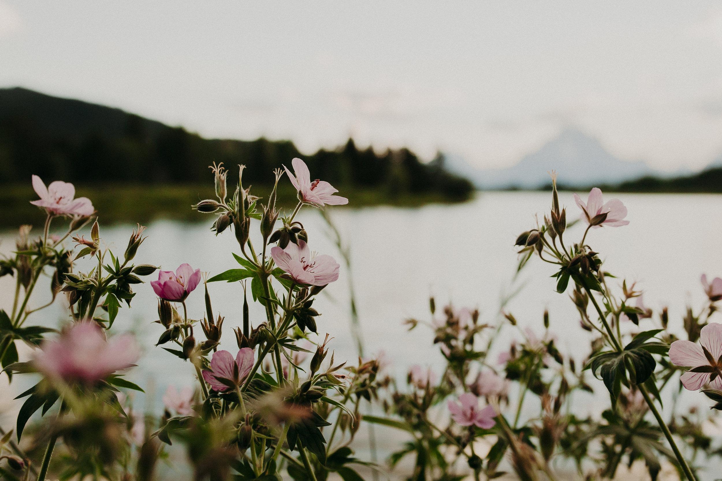 Tetons-Idaho-29.jpg