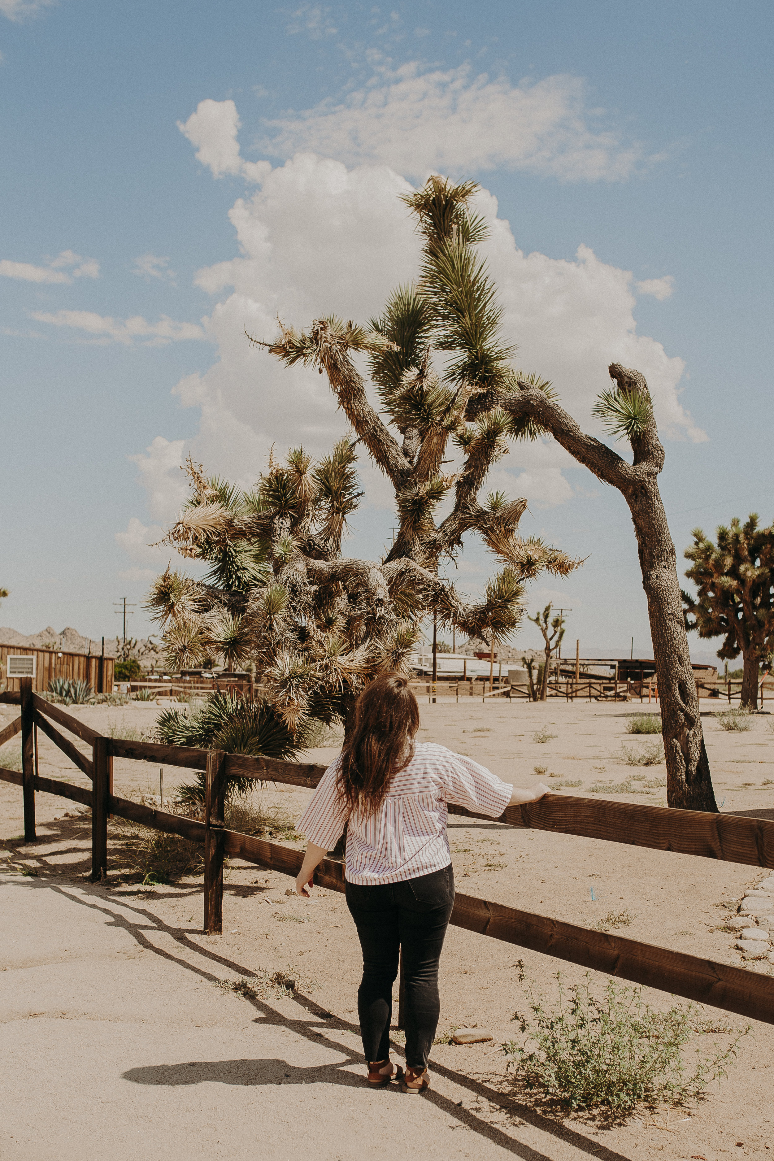 Pioneertown-California-3.jpg