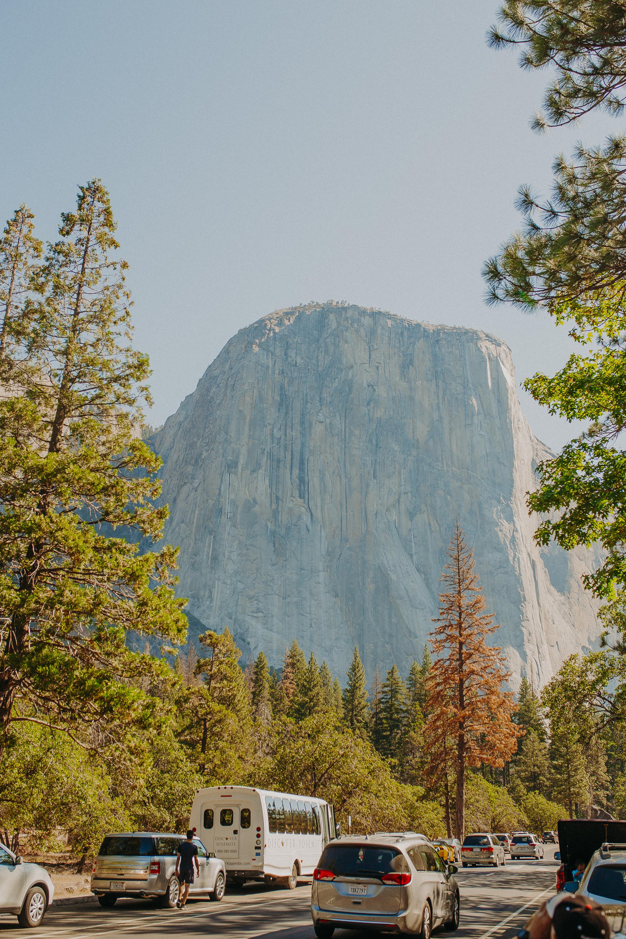 Visit-Yosemite-National-Park-Pictures-California-2.jpg