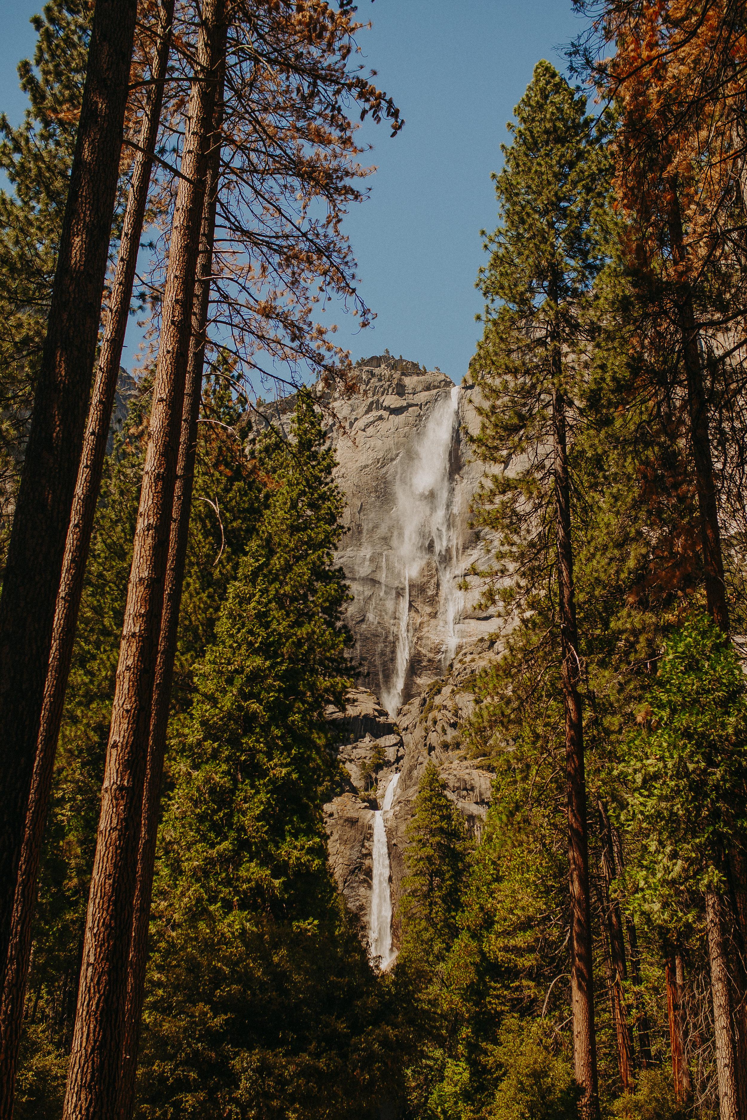 Visit-Yosemite-National-Park-Pictures-California-10.jpg
