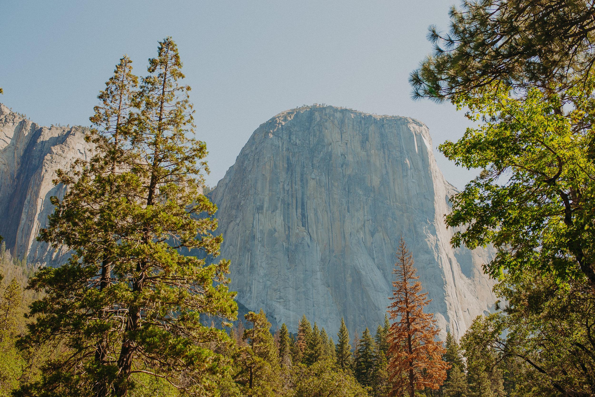 Visit-Yosemite-National-Park-Pictures-California.jpg