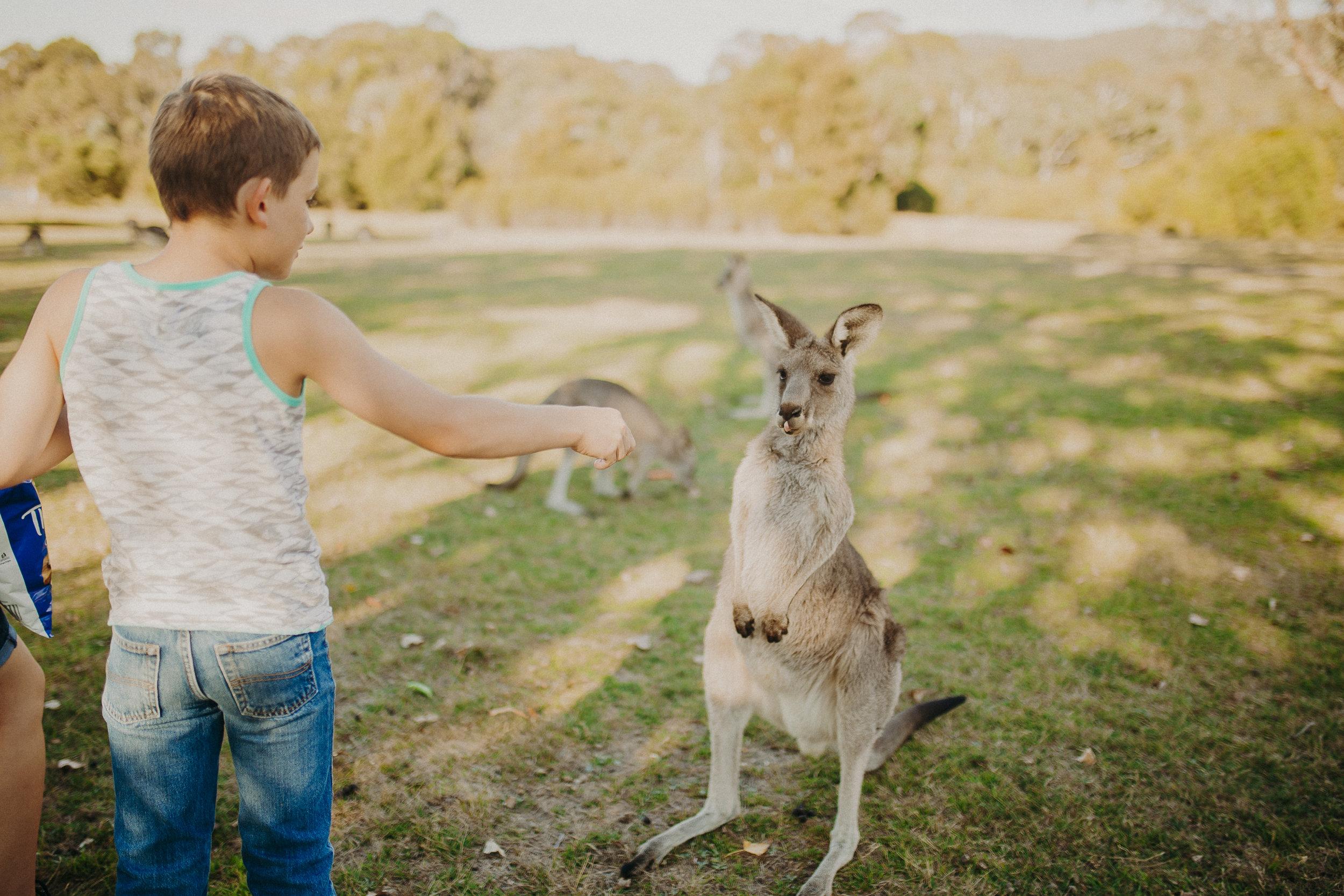 Canberra-Australia-Things-To-Do.jpg