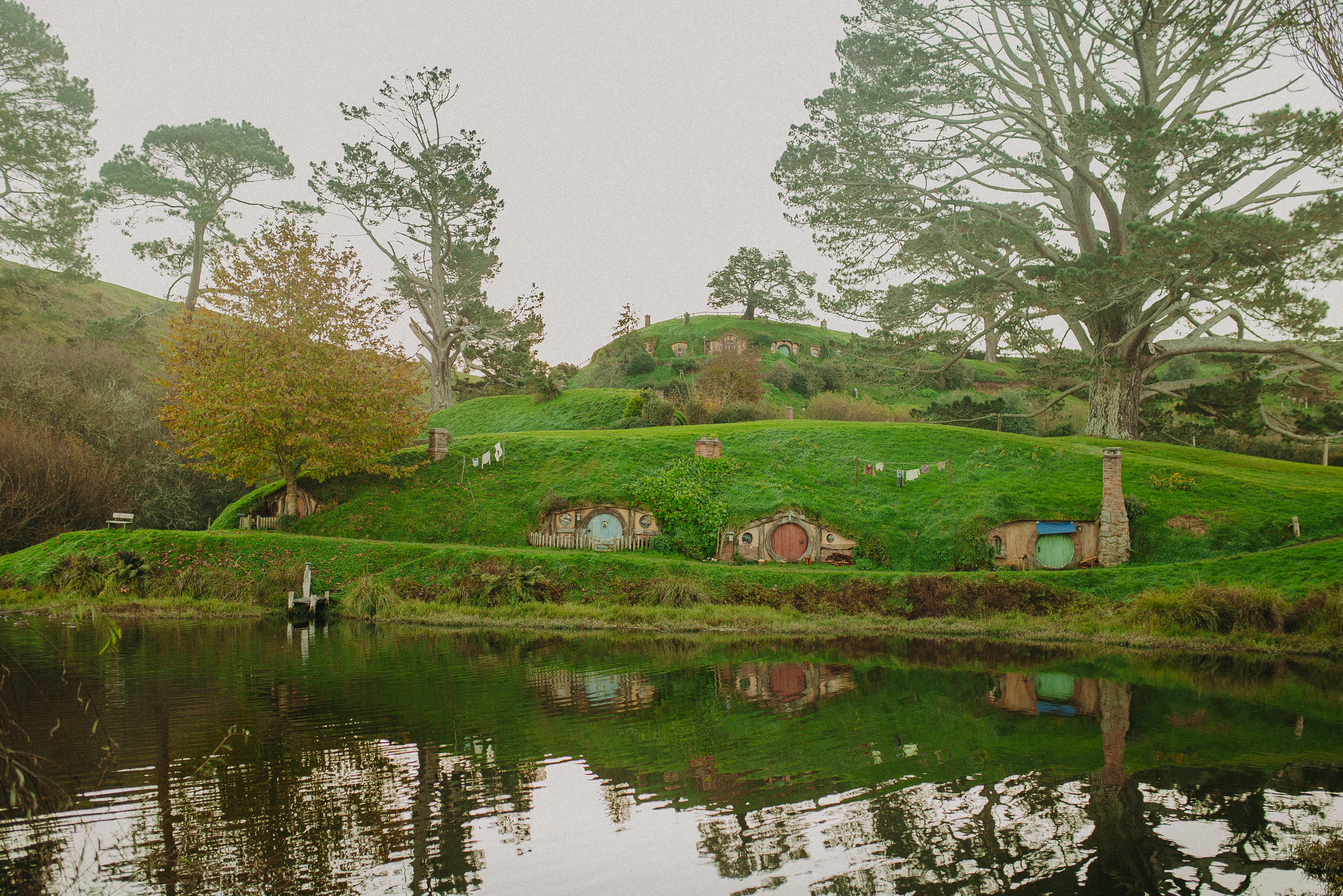 hobbiton-new-zealand-lord-of-the-rings-tour-21.jpg