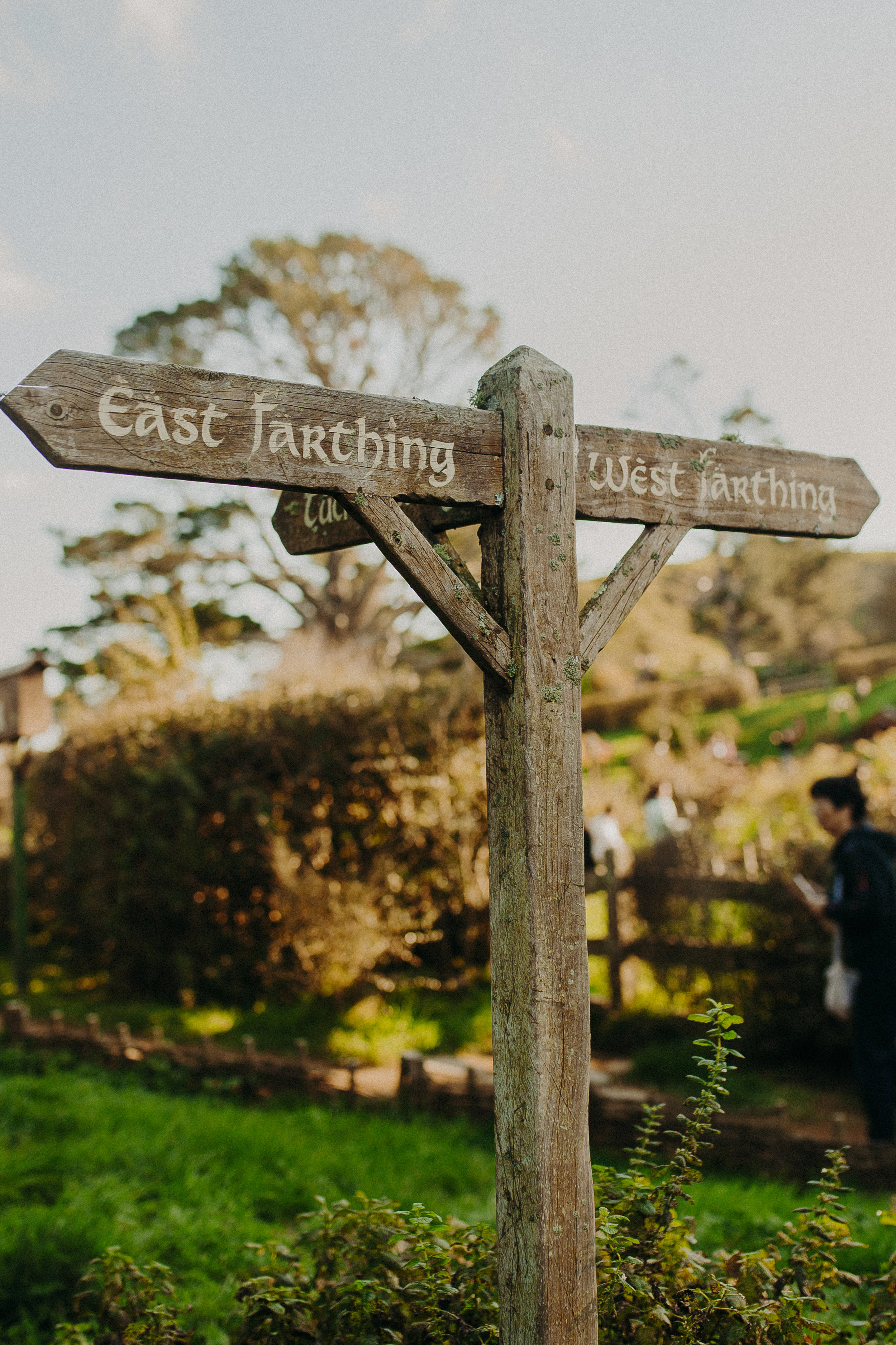 hobbiton-new-zealand-lord-of-the-rings-tour-3.jpg