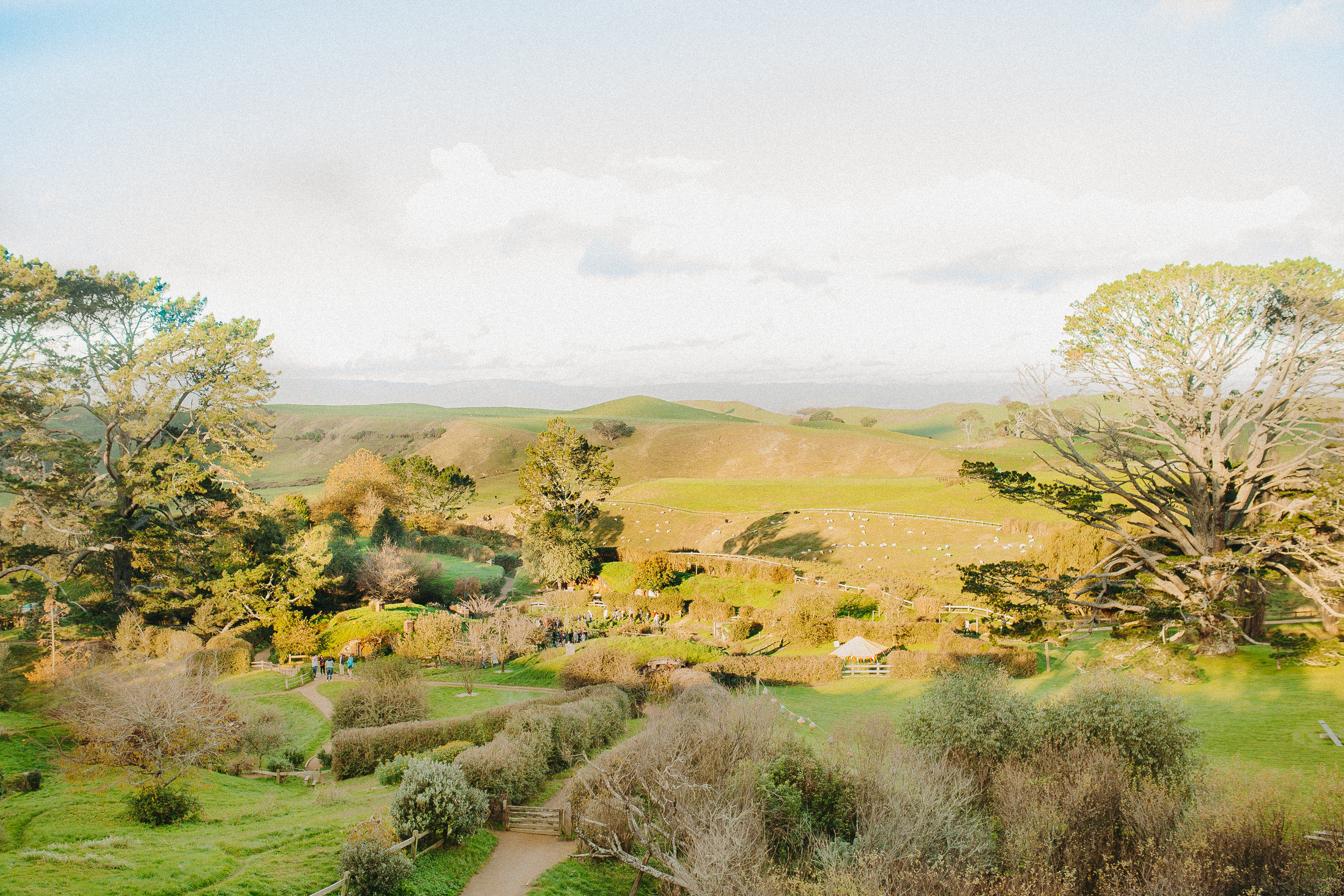 hobbiton-new-zealand-lord-of-the-rings-tour-6.jpg