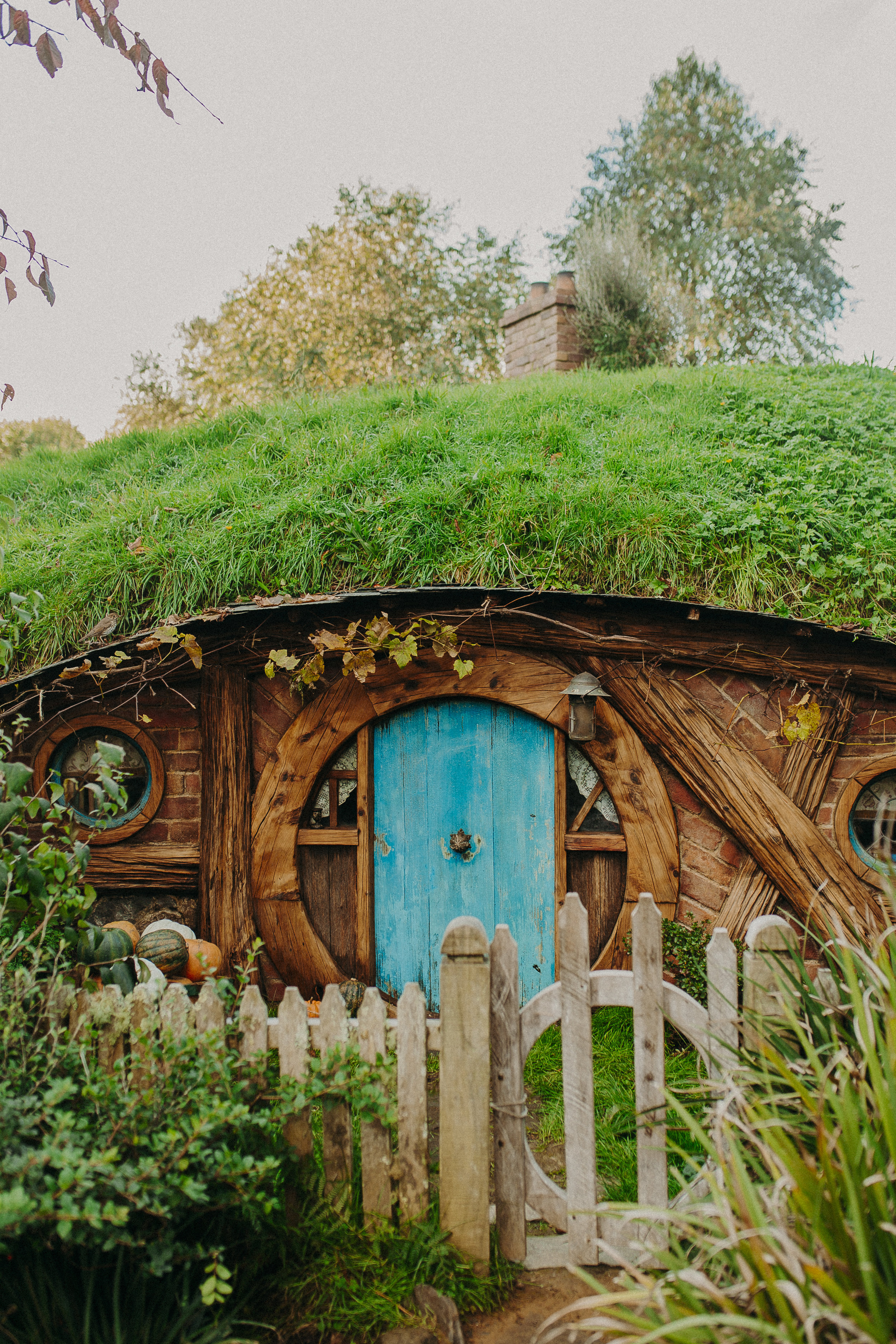 hobbiton-new-zealand-lord-of-the-rings-tour.jpg