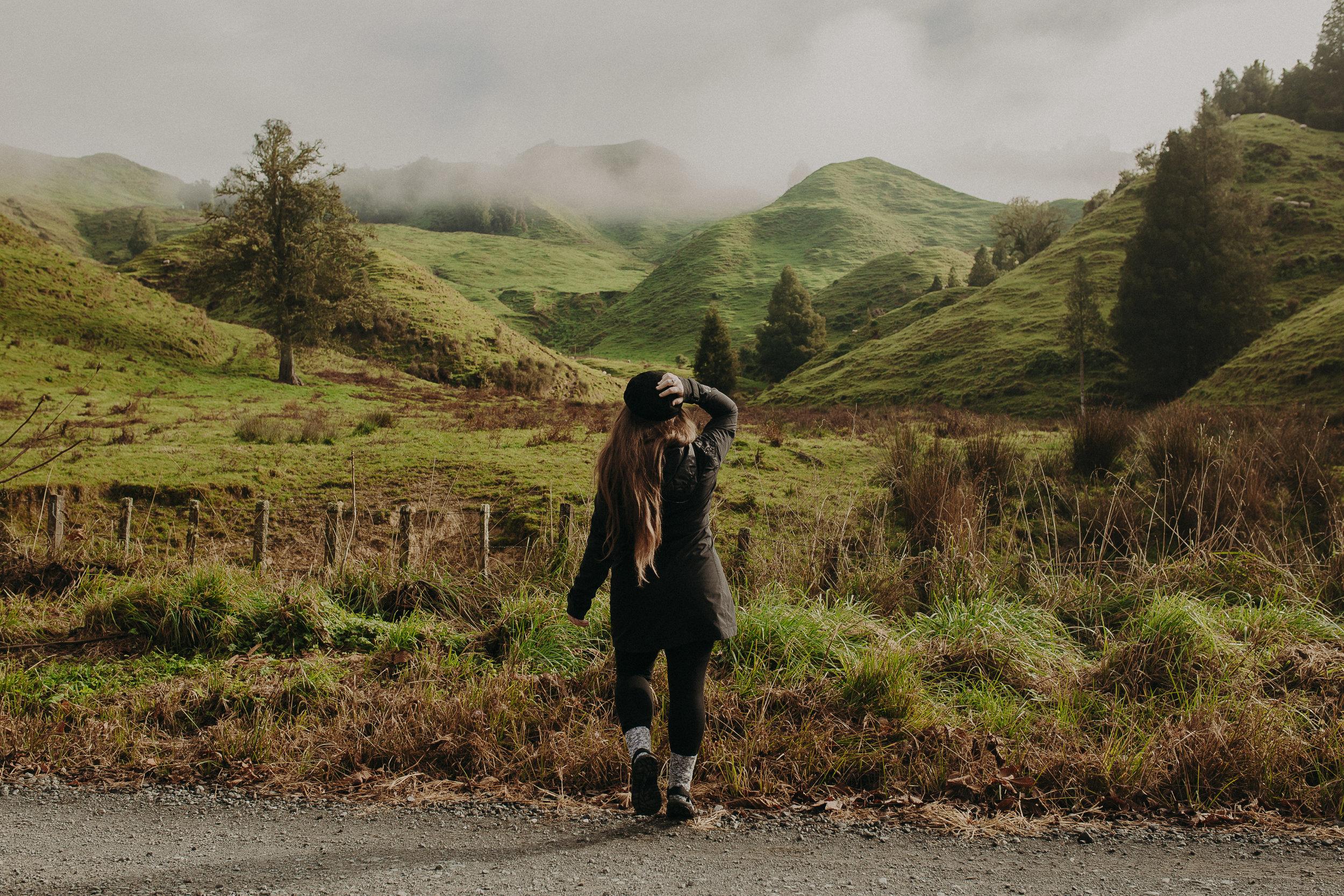 Forgotten-World-Highway-New-Zealand-8.jpg