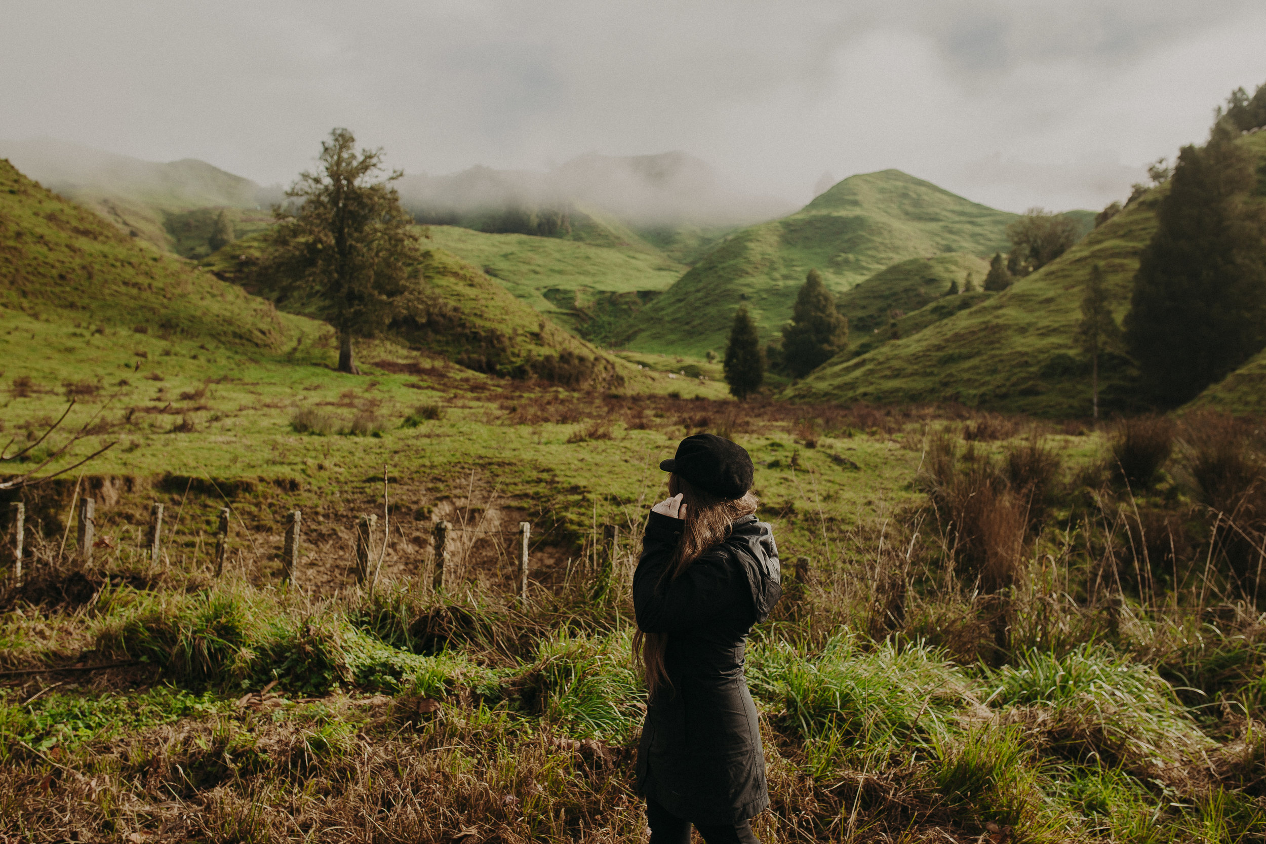 Forgotten-World-Highway-New-Zealand-5.jpg