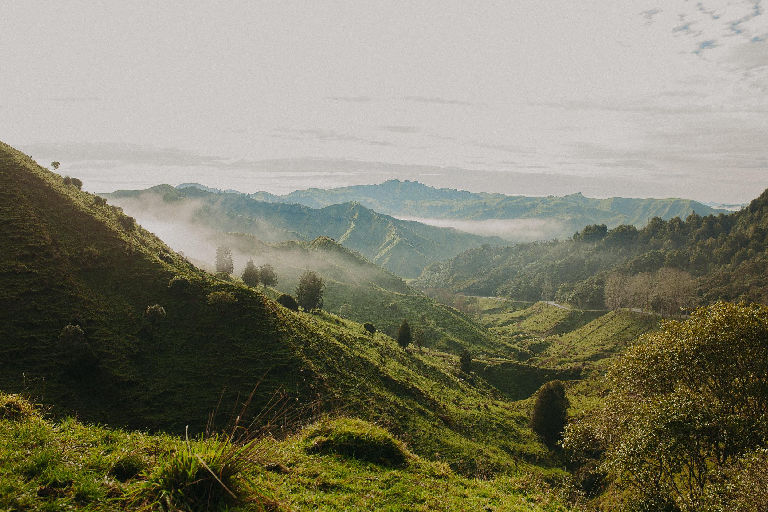 Forgotten-World-Highway-New-Zealand-10.jpg