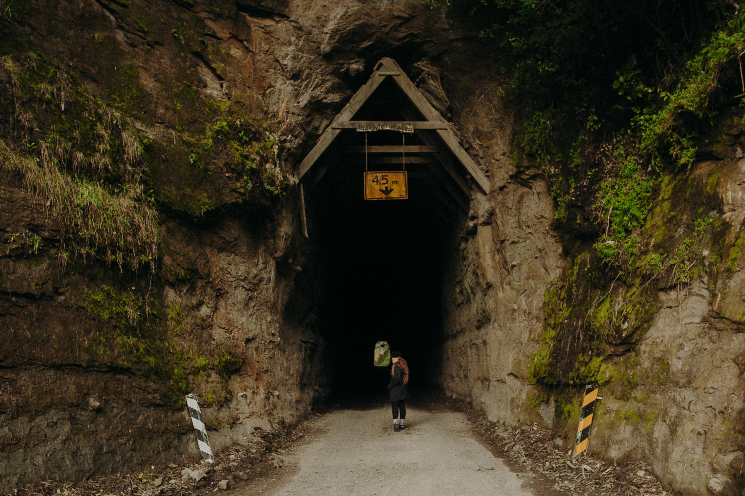 Forgotten-World-Highway-New-Zealand-25.jpg