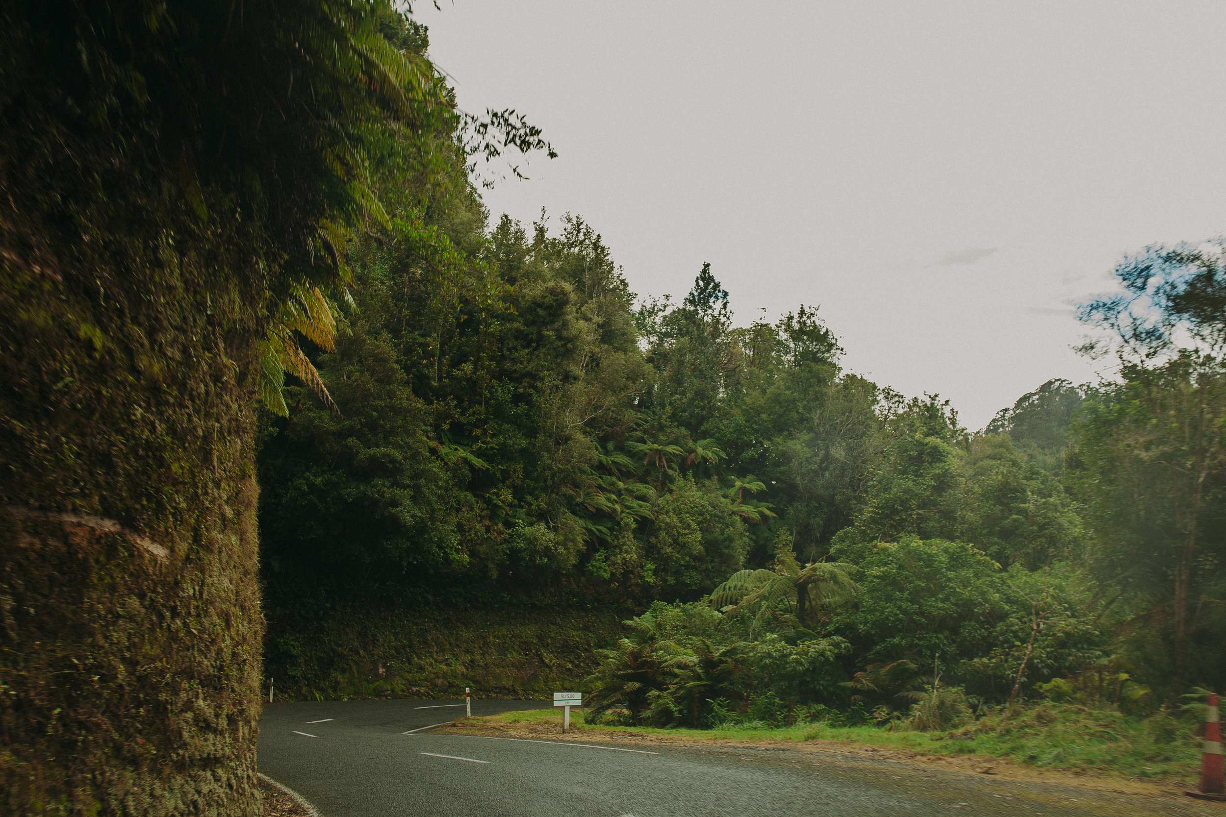 Forgotten-World-Highway-New-Zealand-29.jpg