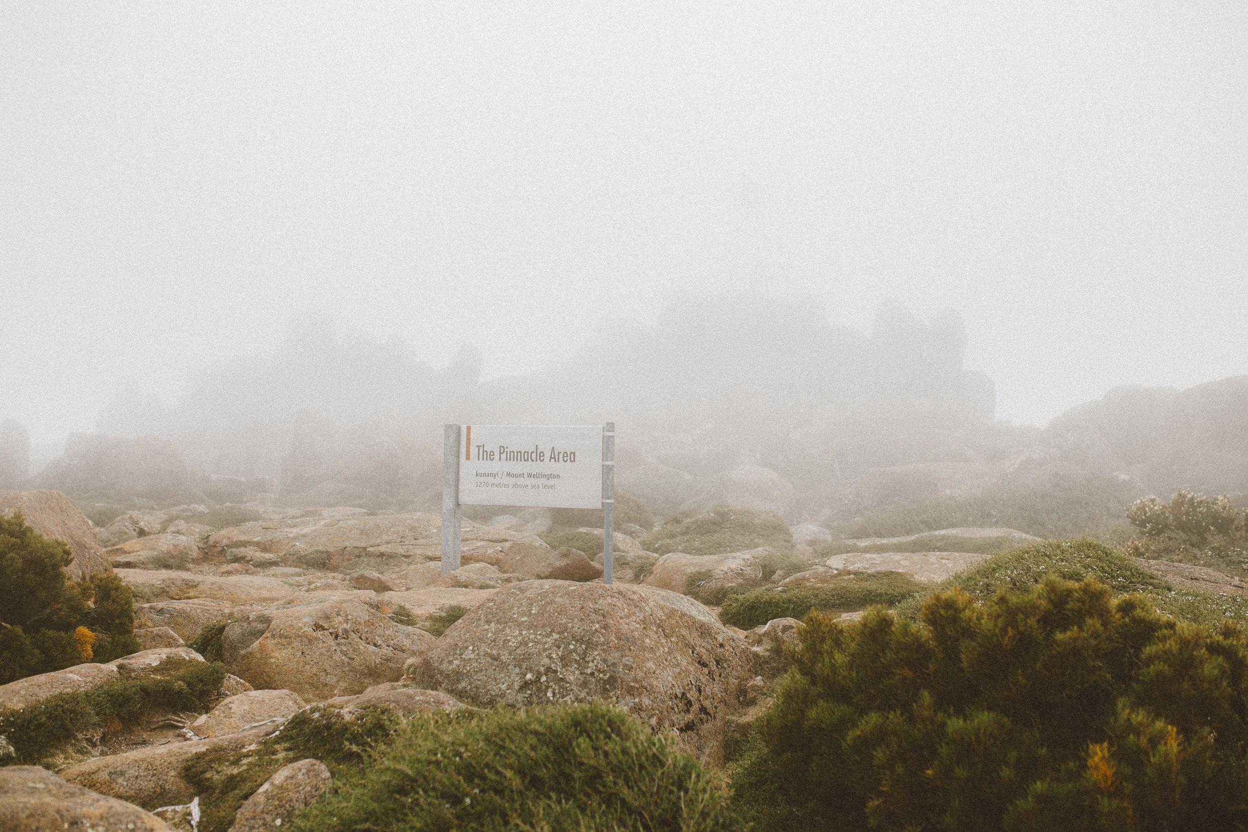 What to do in Hobart Tasmania-2.jpg
