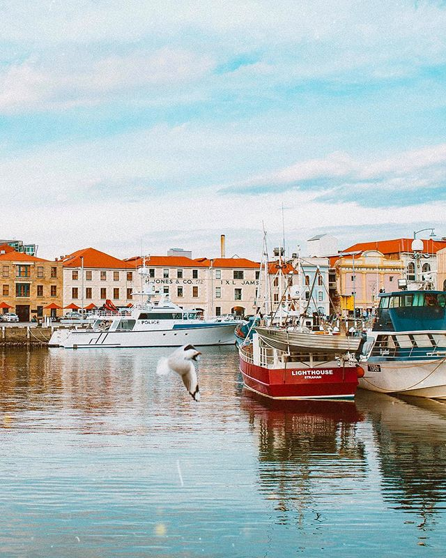 The Hobart Wharf was giving me major Bergen/Amsterdam vibes! 🤩 I just love colorful buildings and boats on the water. Also seriously dreaming of being here, rn... The more it snows the more I can't remember why I live in Utah... 🧐🤔🤷🏼‍♀️ . . . . . . . . . . . . #findingfoundation #livethelittlethings #liveadventurously #beautifuldestinations #mytinyatlas #viewfromthetop #wheretofindme #openmyworld #flashesofdelight #abmtravelbug #simplyadventure #dametraveler #wearetravelgirls #girlswhotravel #darlingescapes #sheisnotlost #wekeepmoments #outside_project #allaboutadventures #hobart #hobartandbeyond #hobarttasmania #hobartlife #tassiestyle