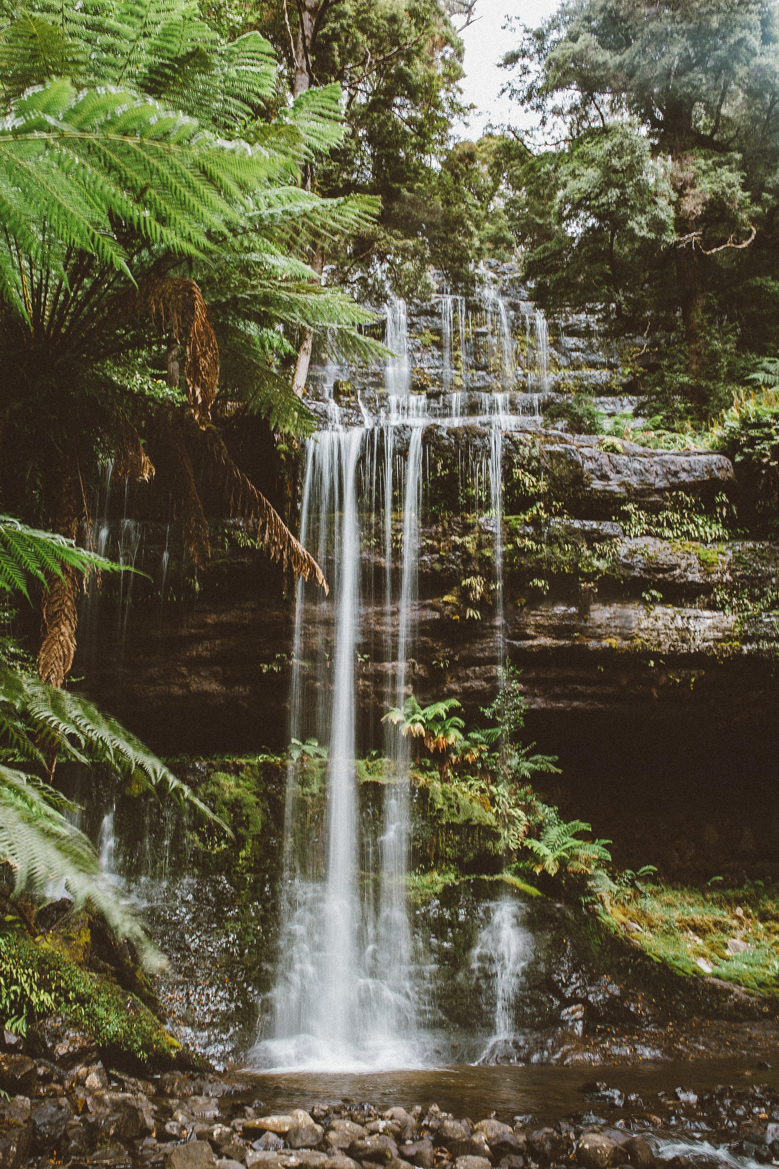 russell-falls-tasmania-mount-field-national-park.jpg