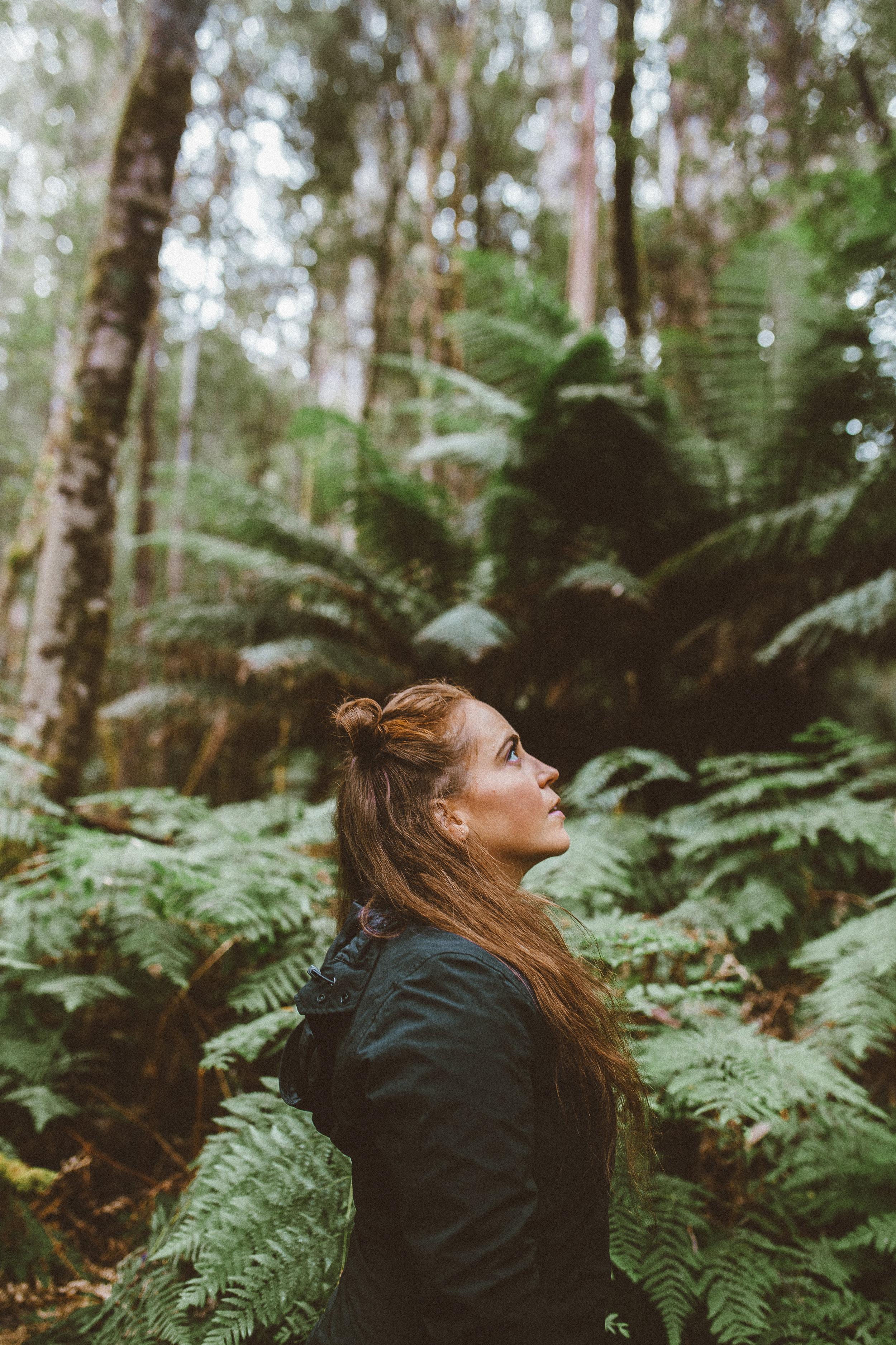 tasmania southwest national park mountains-8.jpg