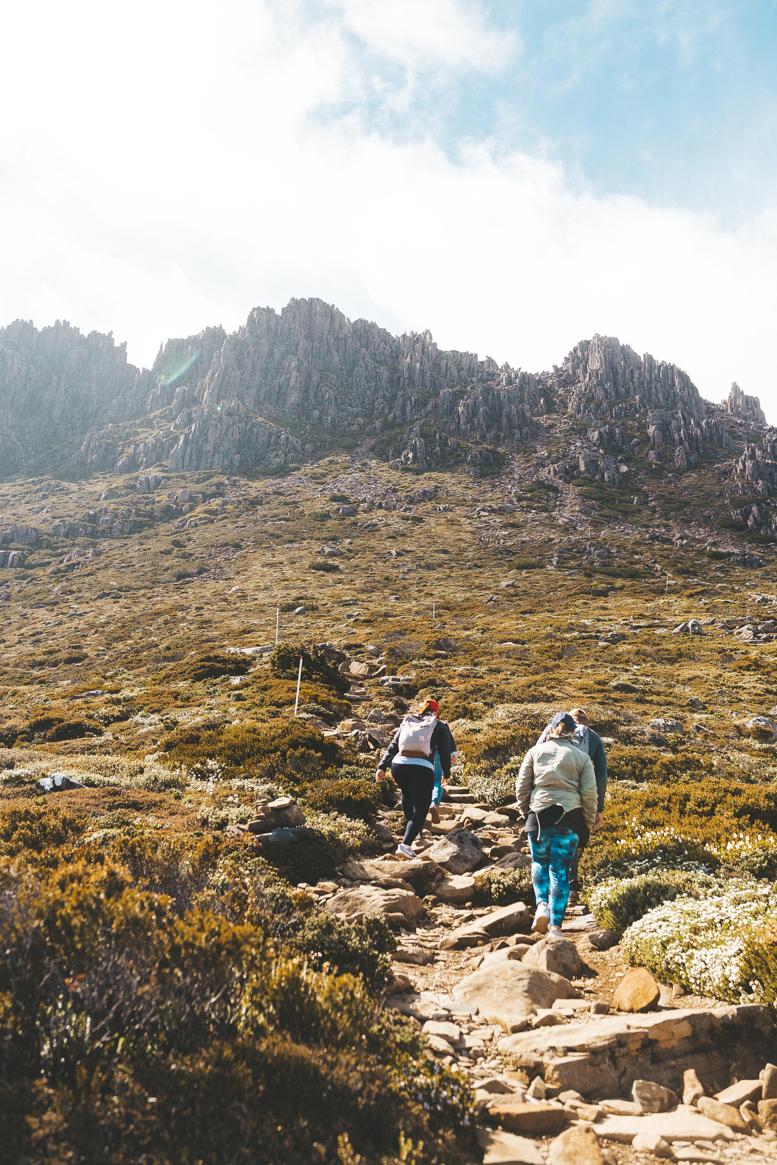 cradle mountain summit hike review tasmania-25.jpg