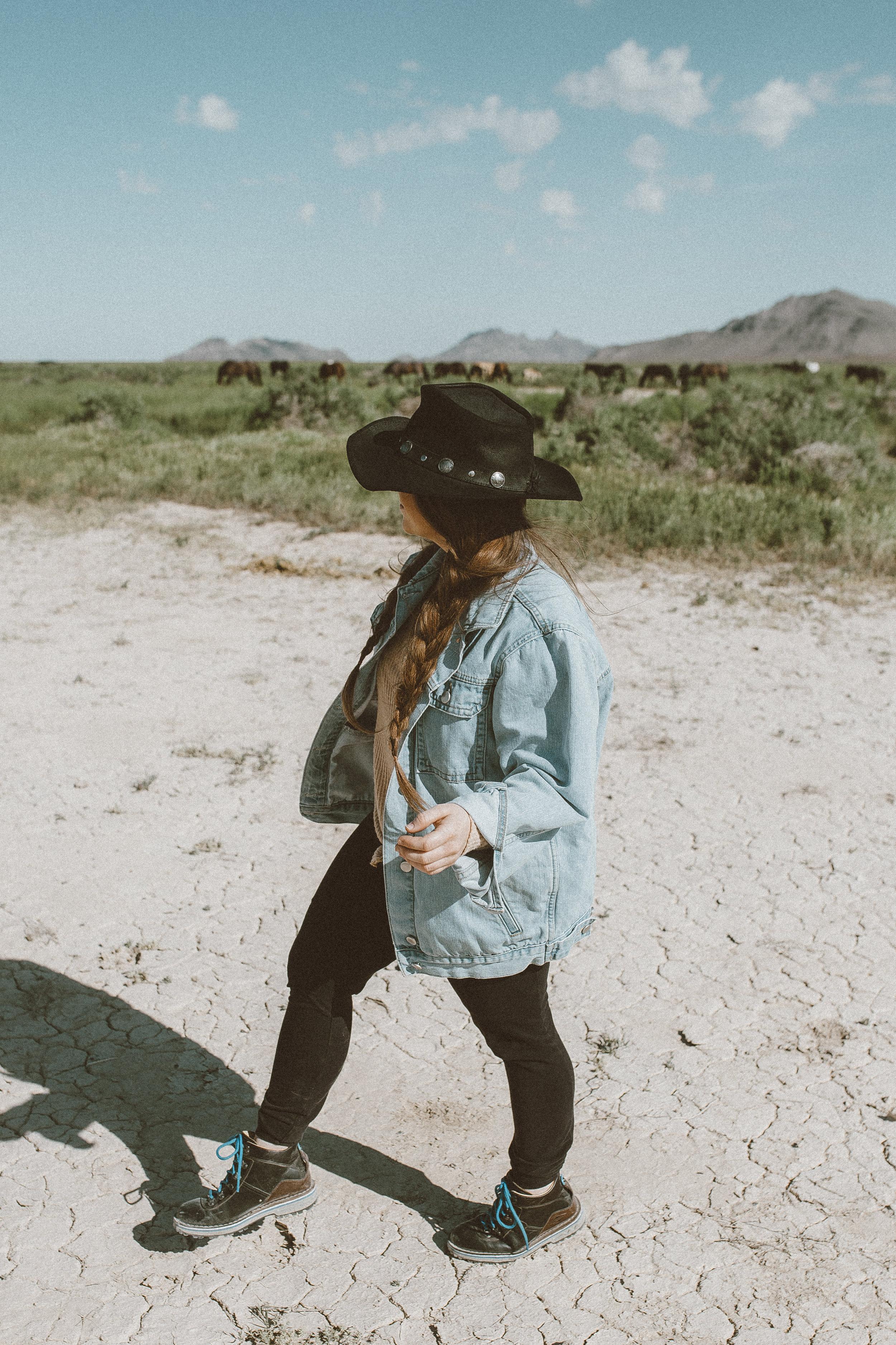 utah's wild horses mustangs-24.jpg