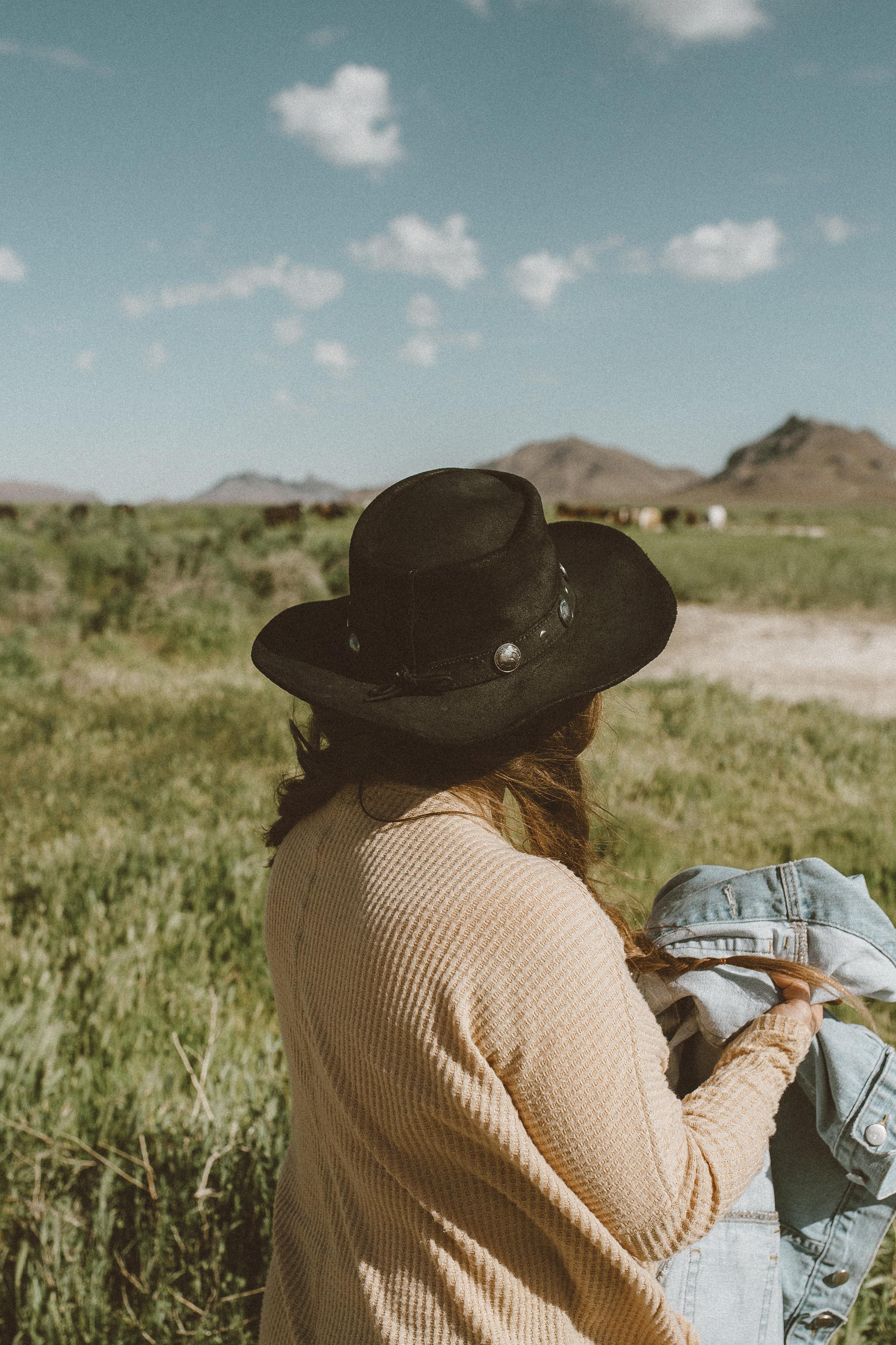 utah's wild horses mustangs-27.jpg