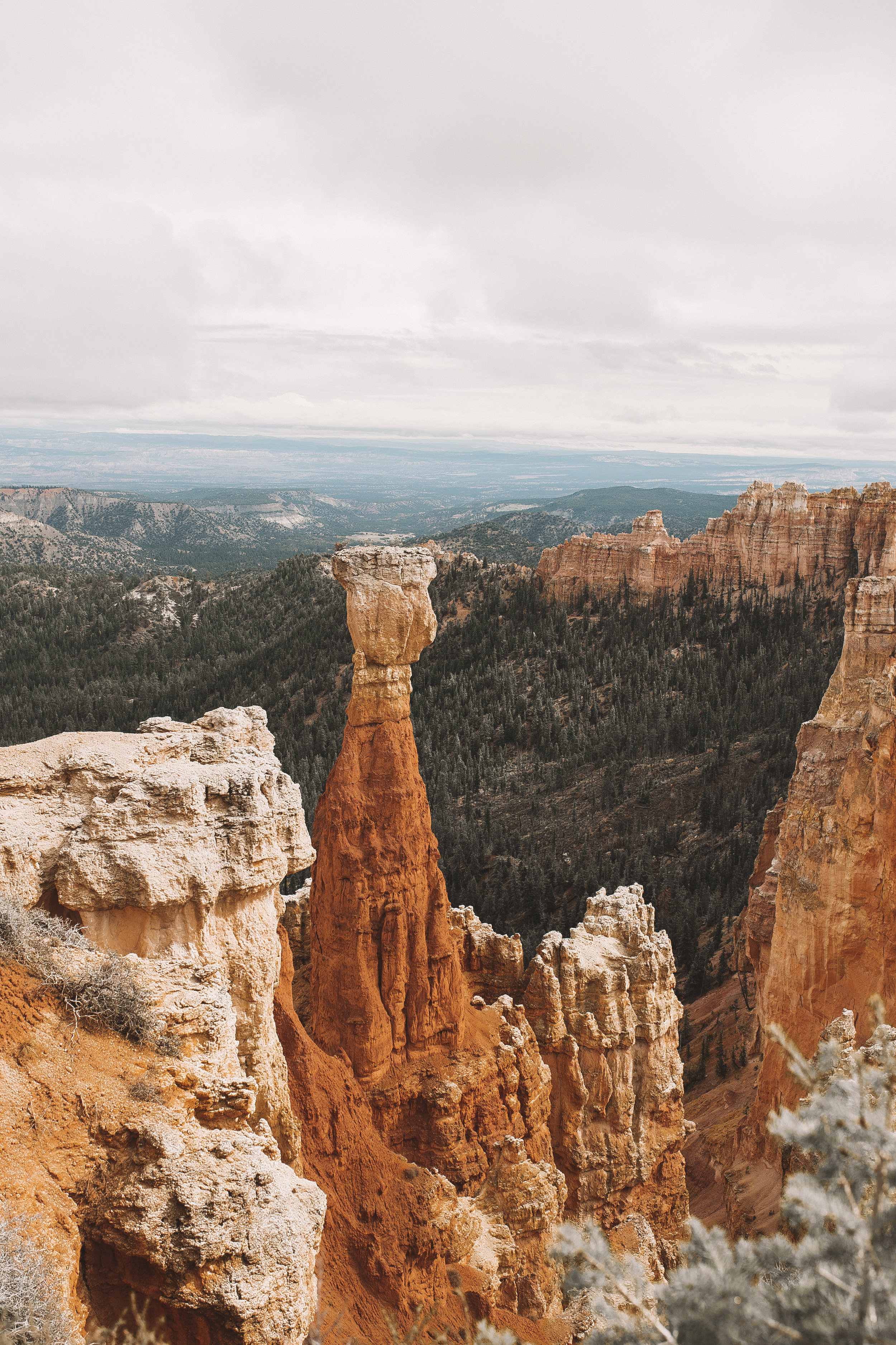 bryce canyon national park utah road trip-4.jpg