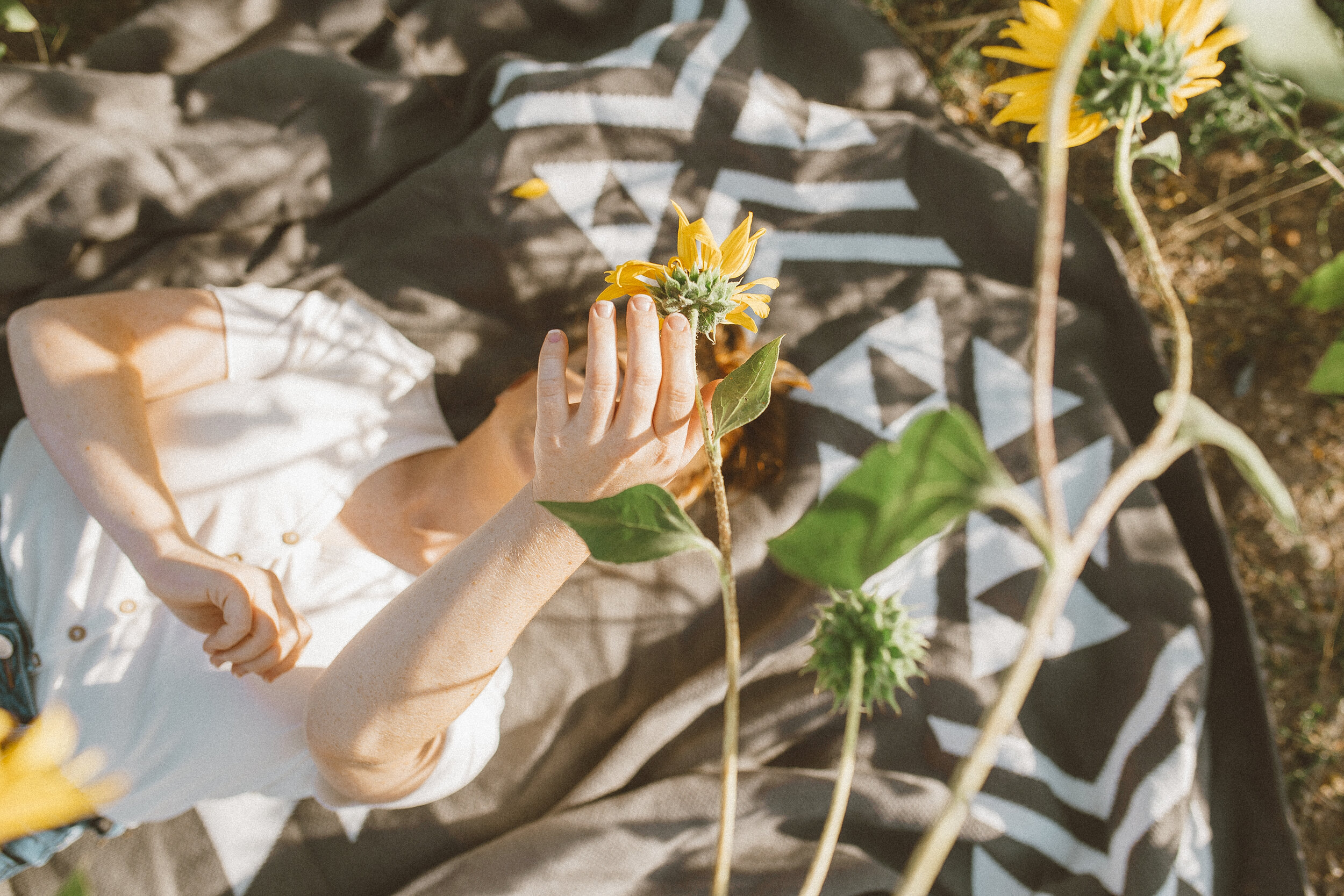 Big Blanket Co Review Sunflower Fields-8.jpg