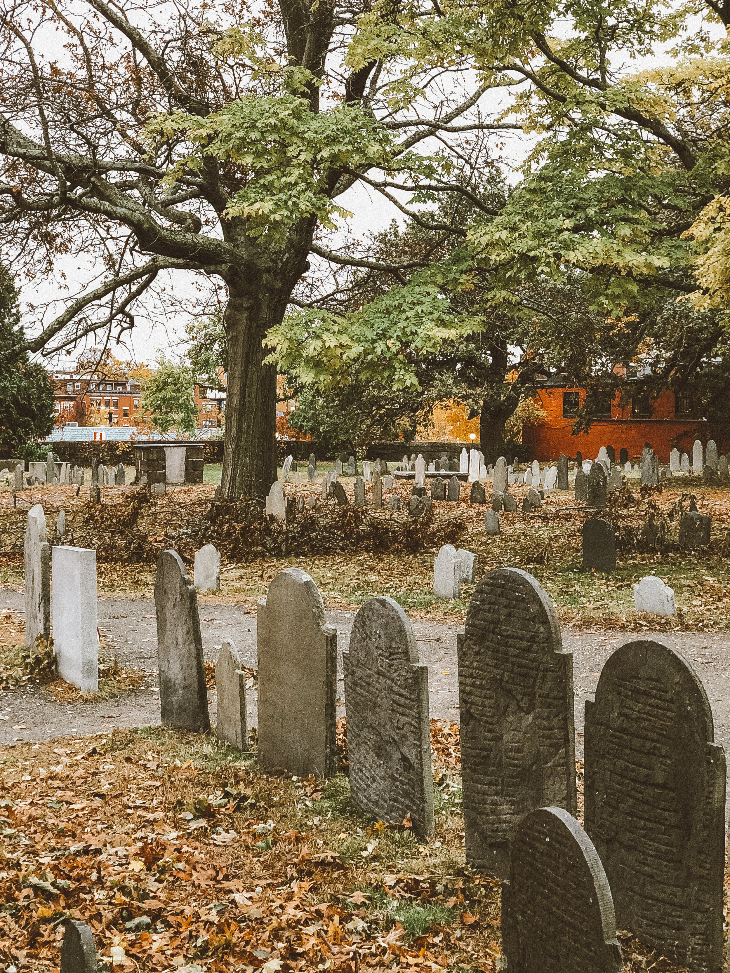 Old Burying Point Cemetery—Charter St.