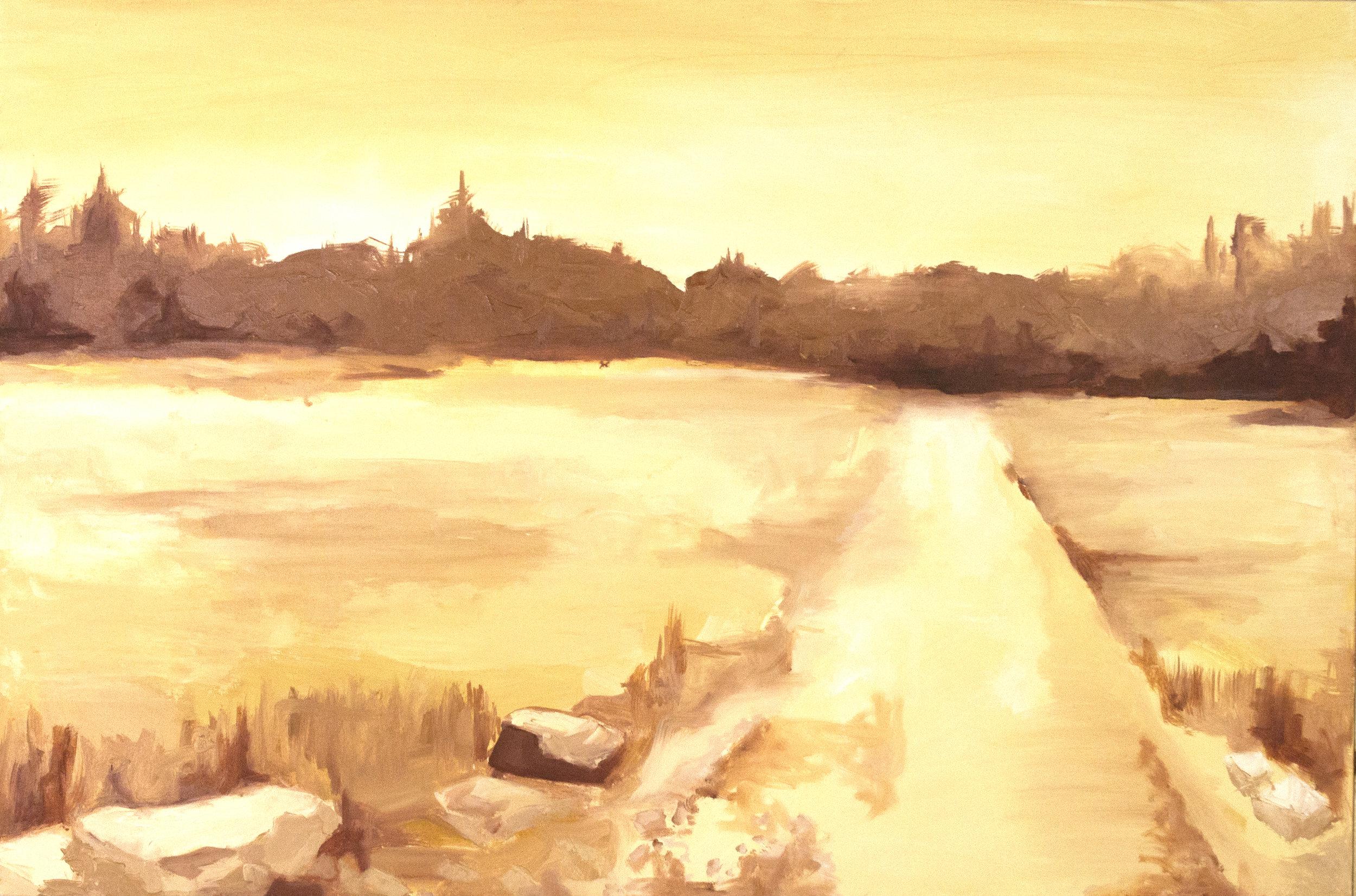"Edisto Island, SC  36""x 24""  oil on canvas  $500"