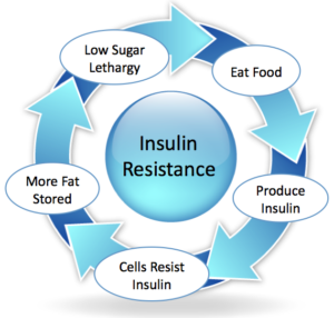 Kate jaramillo Insulin Resistance- How The Ketogenic Diet Helps.png